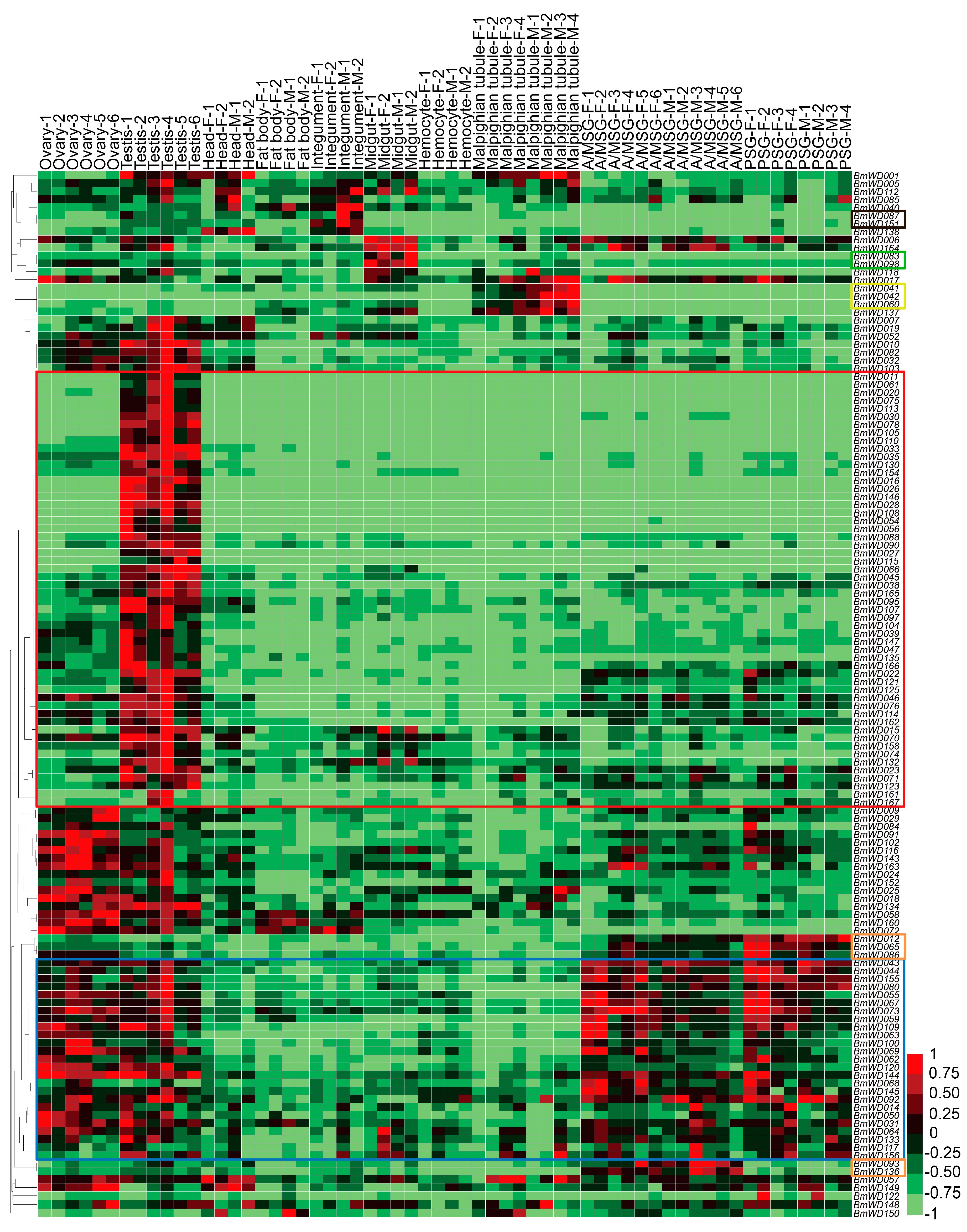 Ijms free full text genome wide identification and ijms 19 00527 g008 publicscrutiny Image collections