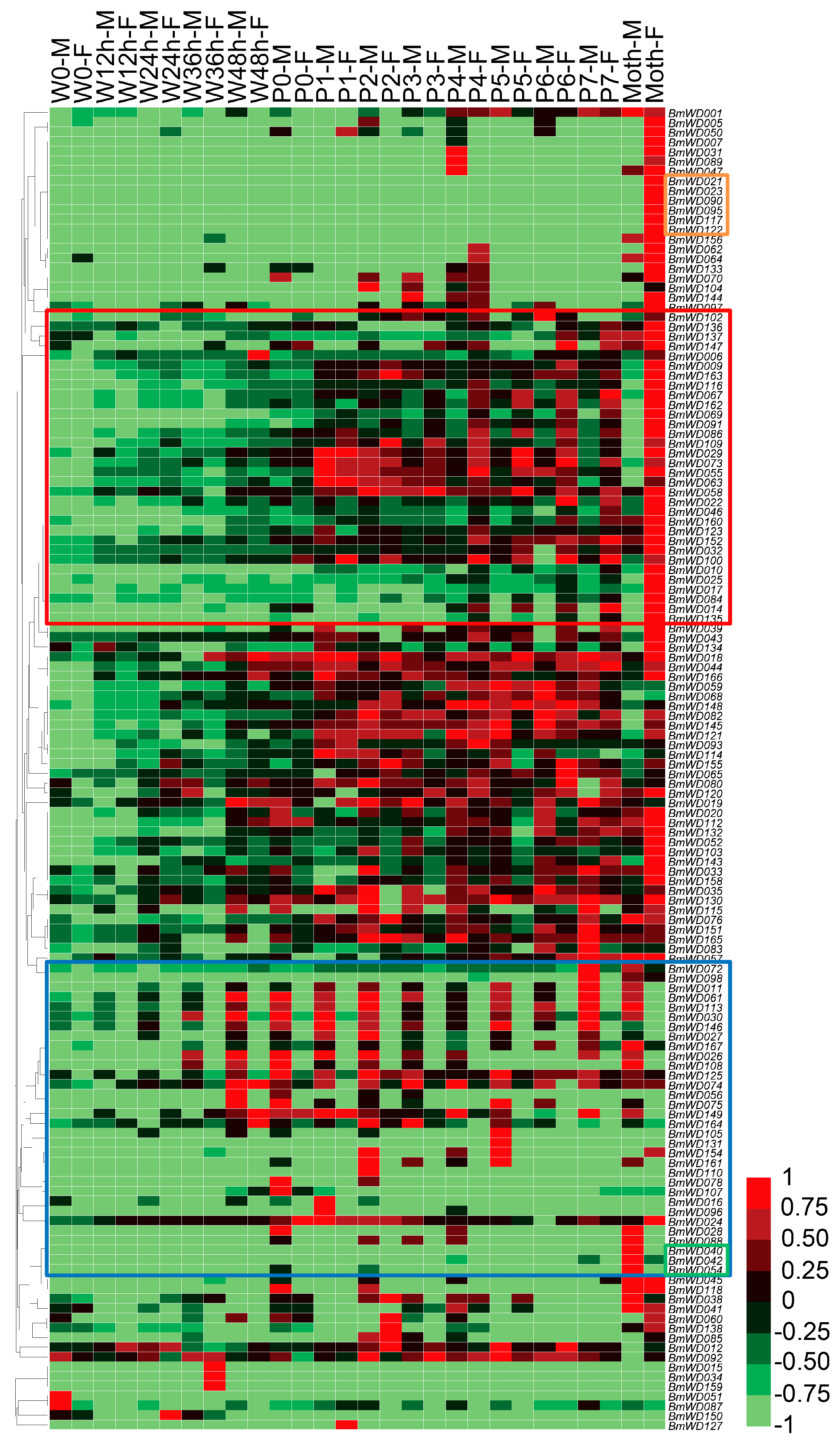 Ijms free full text genome wide identification and ijms 19 00527 g009 publicscrutiny Image collections