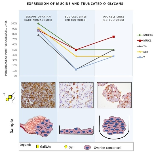 IJMS | Special Issue : Ovarian Cancer: Pathogenesis, Diagnosis, and