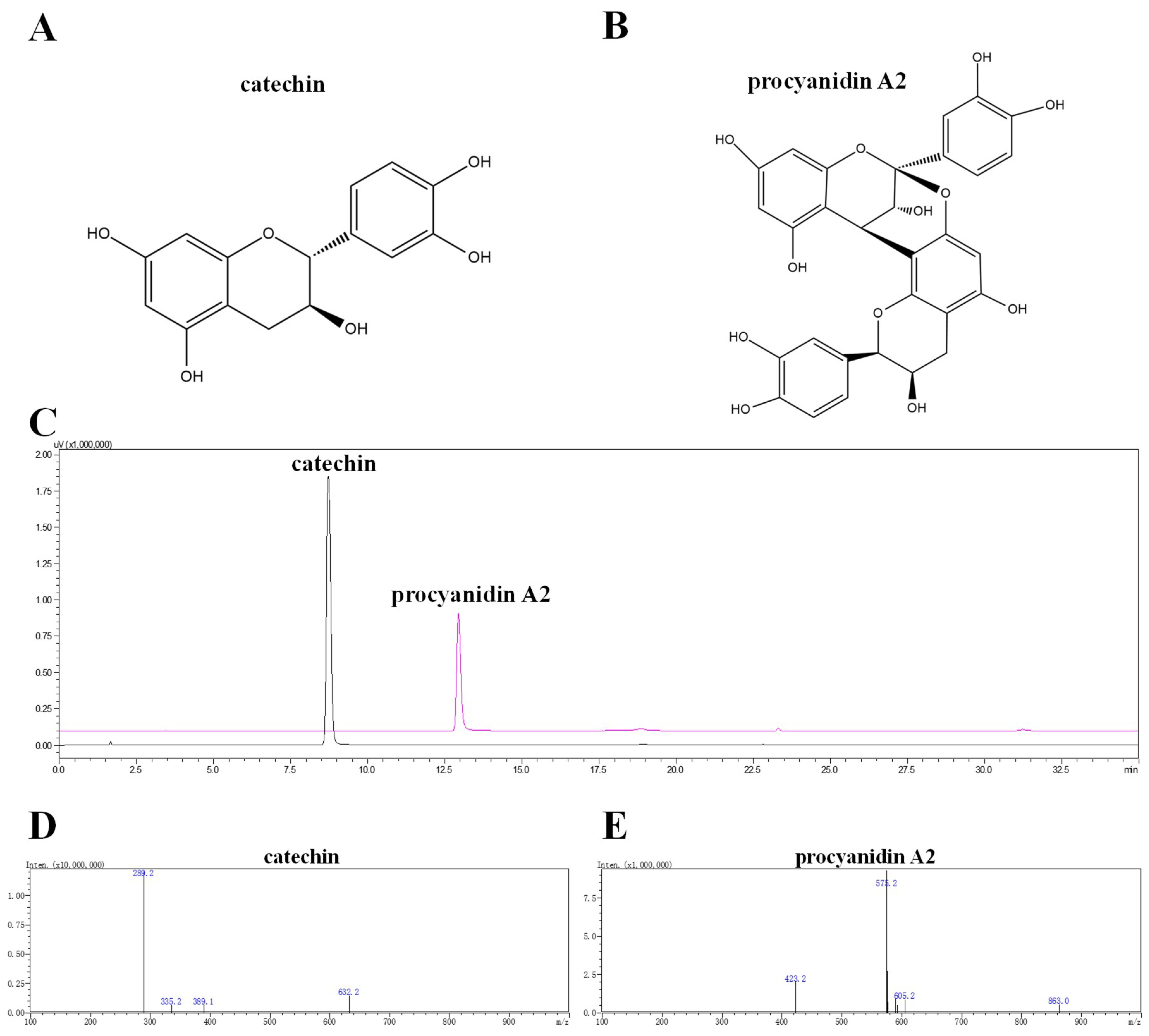 IJMS | Free Full-Text | Polyphenols Derived from Lychee Seed