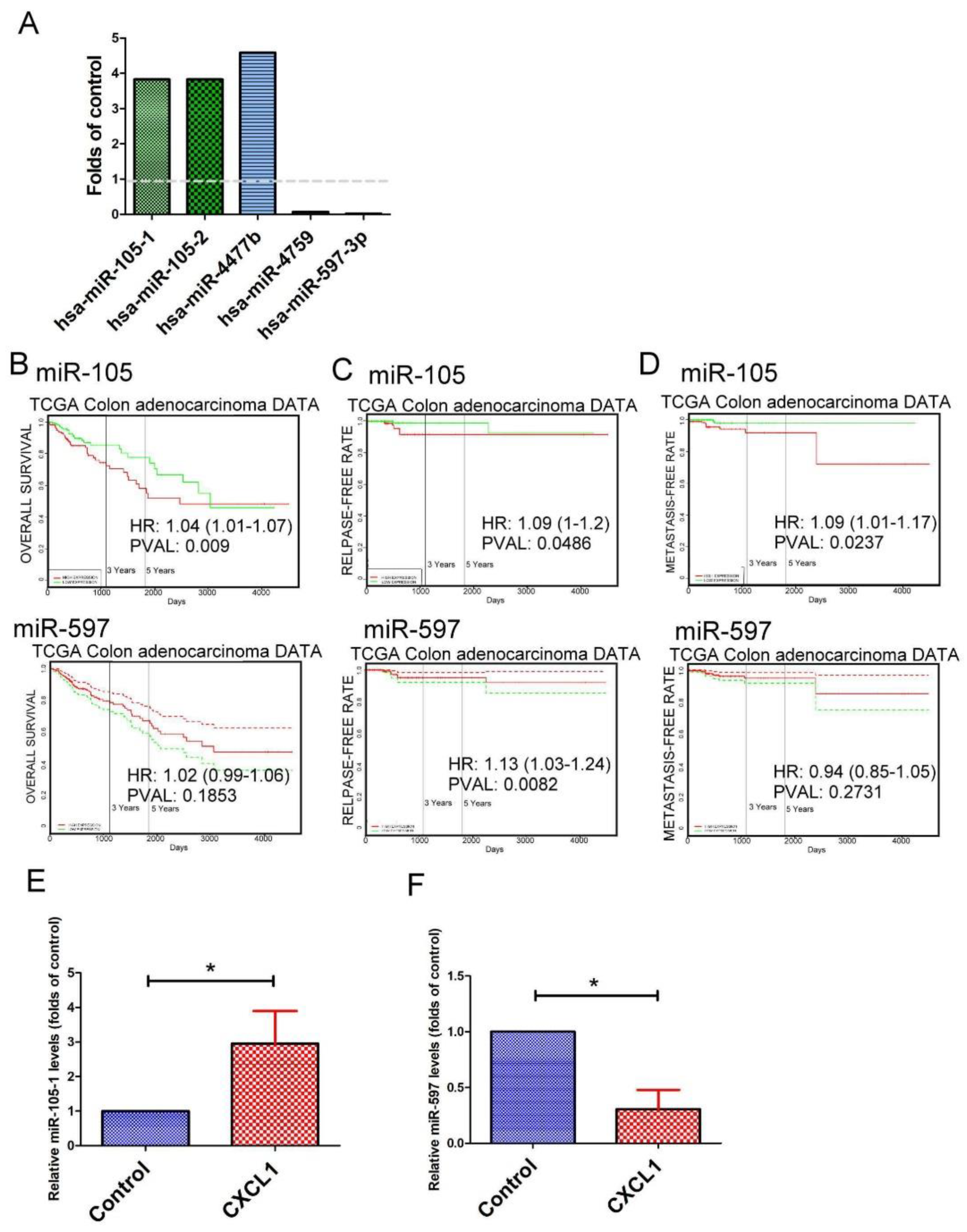 Ijms Free Full Text Interaction Between Tumor Associated Dendritic Cells And Colon Cancer Cells Contributes To Tumor Progression Via Cxcl1 Html