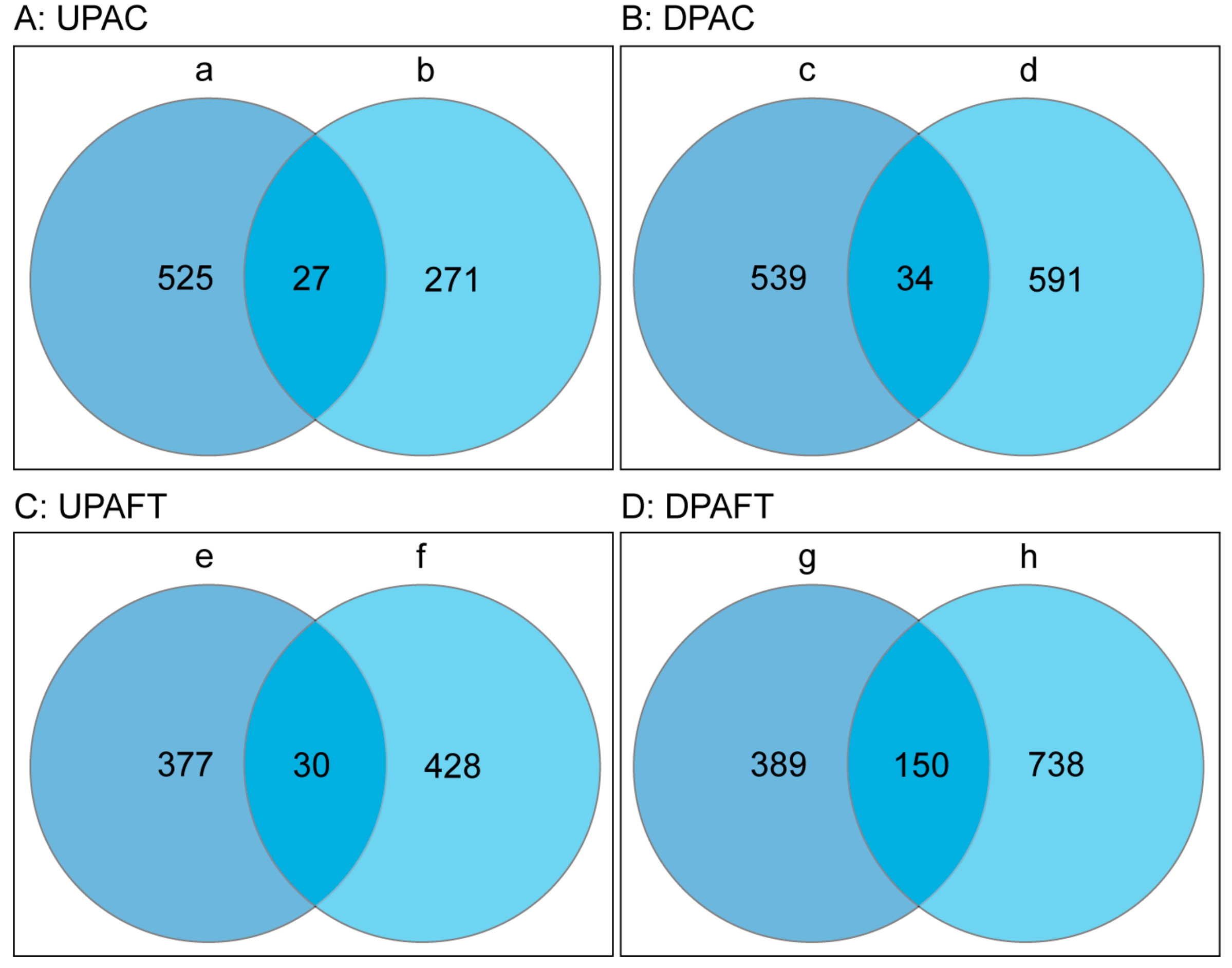 IJMS | Free Full-Text | Proteomic Analysis of the Function of a ...