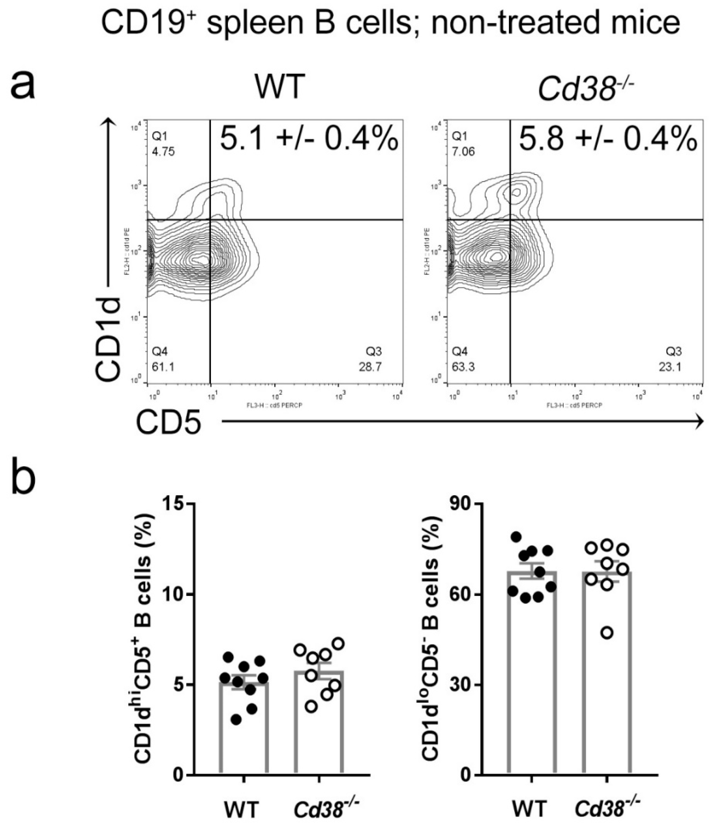 Ijms Free Full Text The Role Of Cd38 On The Function Of