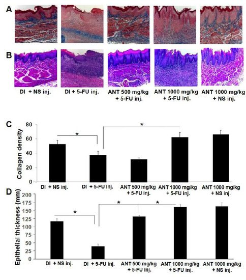 IJMS | Special Issue : New Innovations in Wound Healing and Repair
