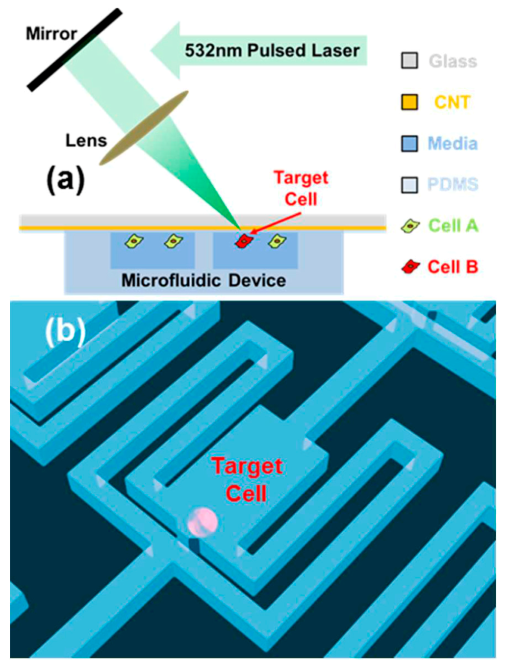 IJMS | Free Full-Text | Current Trends of Microfluidic Single-Cell