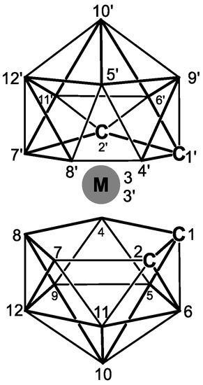 School Bu Diagram