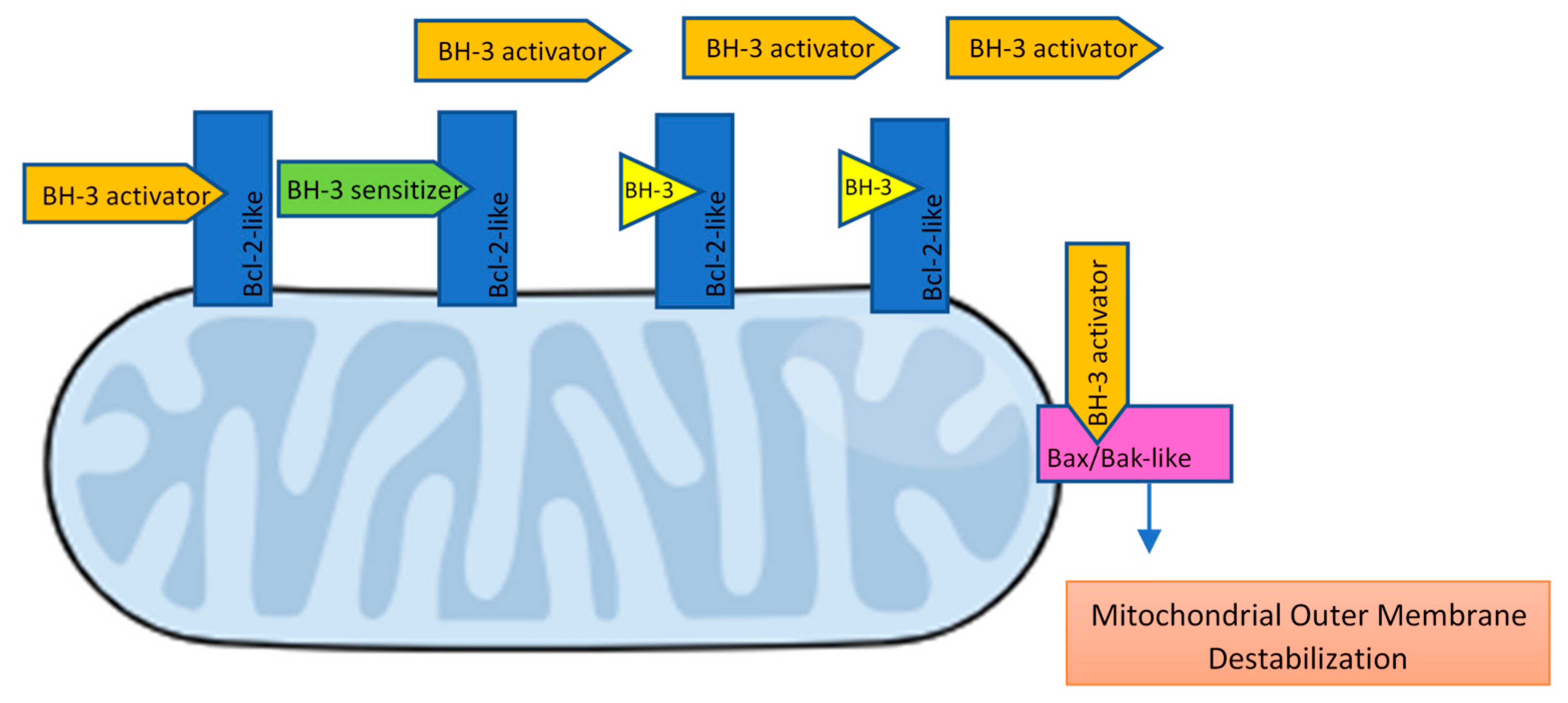 IJMS | Free Full-Text | Bcl-2 Inhibition to Overcome Resistance to