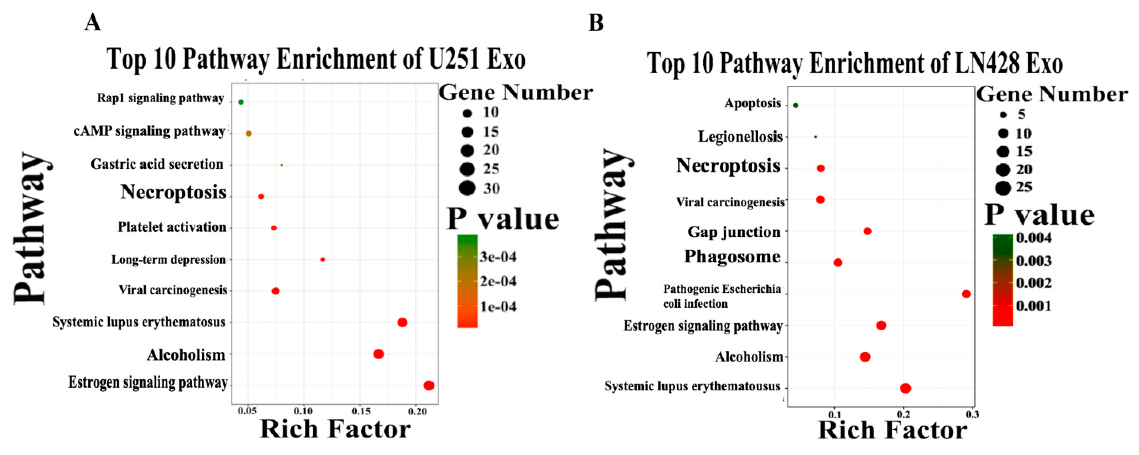 c1de70014282 IJMS | Free Full-Text | Differential Exosomic Proteomic Patterns and ...