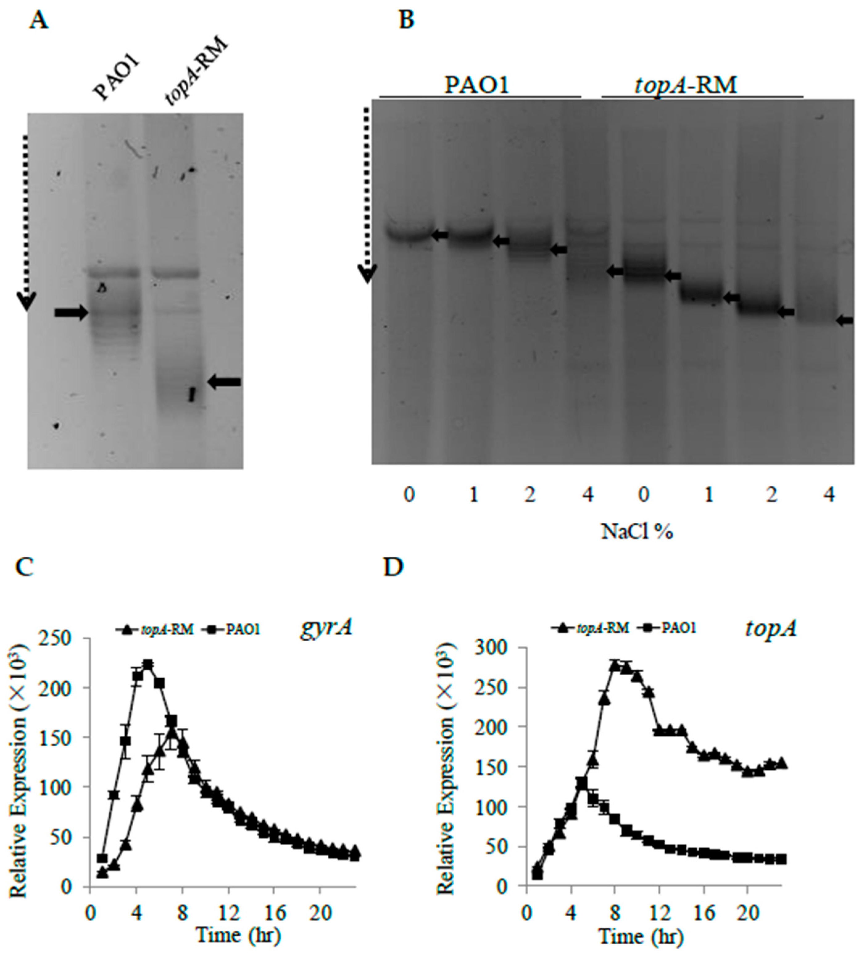 IJMS   Free Full-Text   Regulatory Effect of DNA