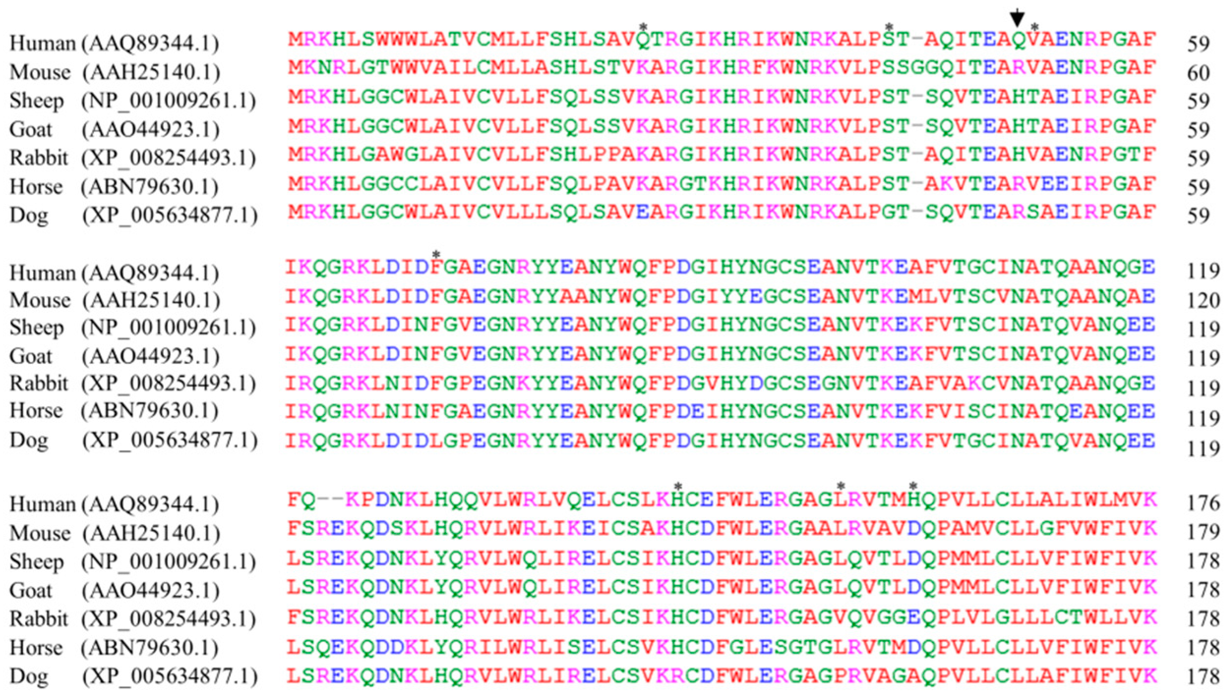 IJMS   Free Full-Text   The First Report of Polymorphisms