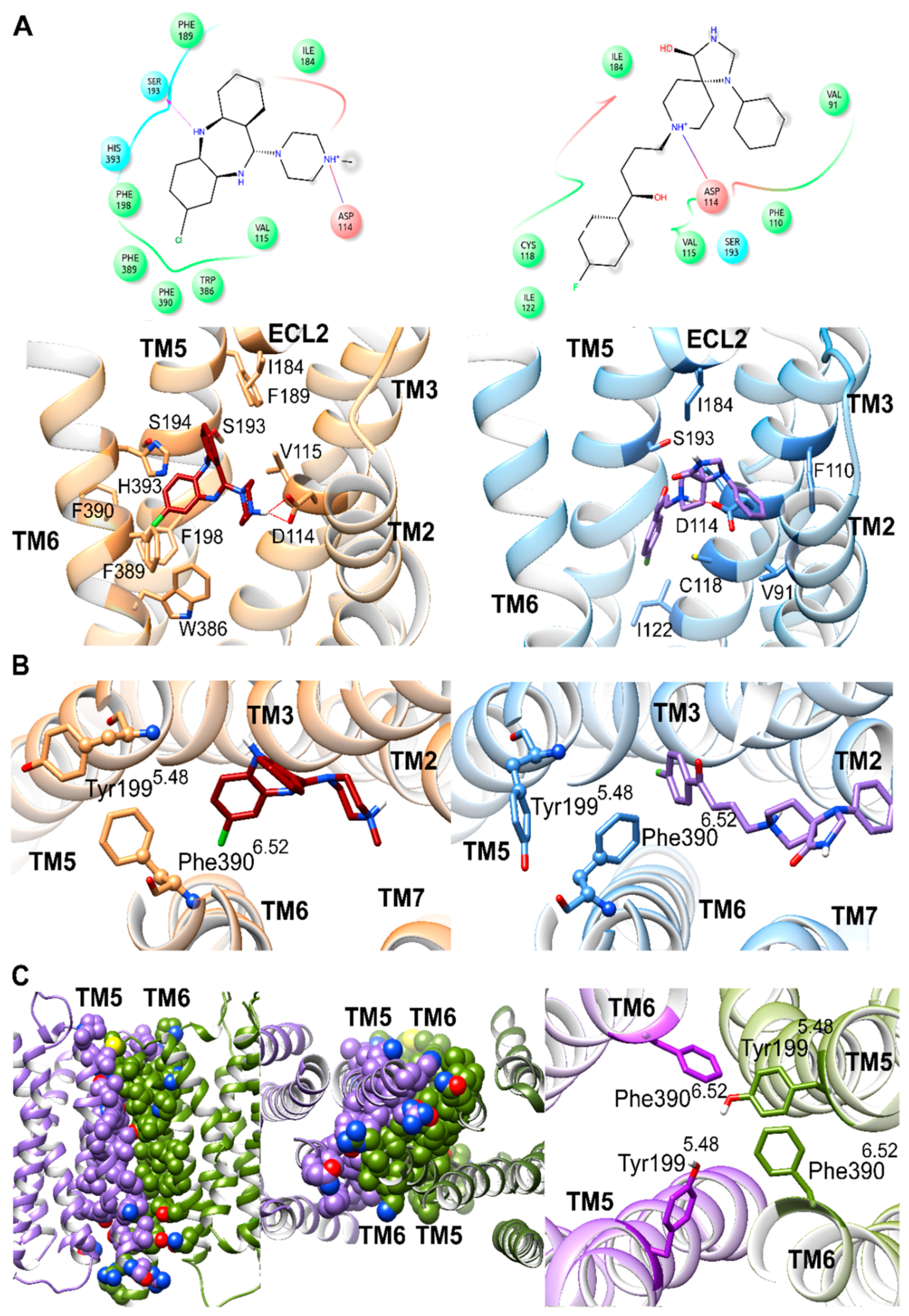 IJMS | Free Full-Text | Distinct Dopamine D2 Receptor Antagonists