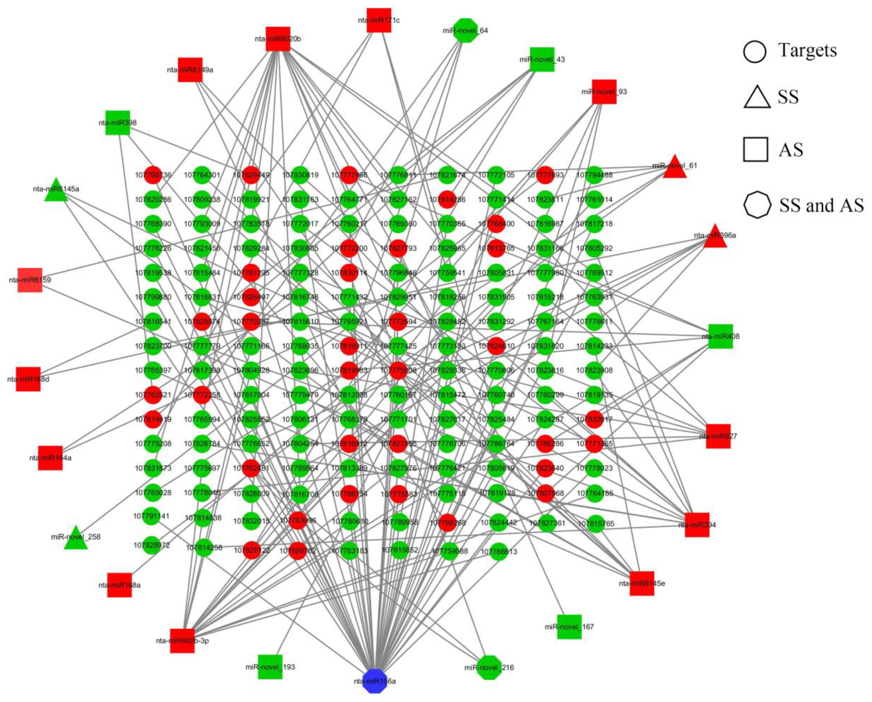 Molecular Network Identified Underlying >> Ijms Free Full Text Integration Of Mrna And Mirna Analysis