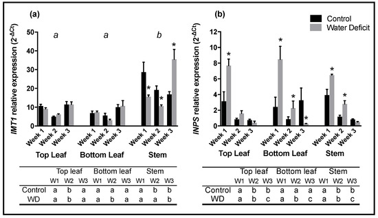 IJMS | Special Issue : Mechanisms of Drought Stress Tolerance in Plants