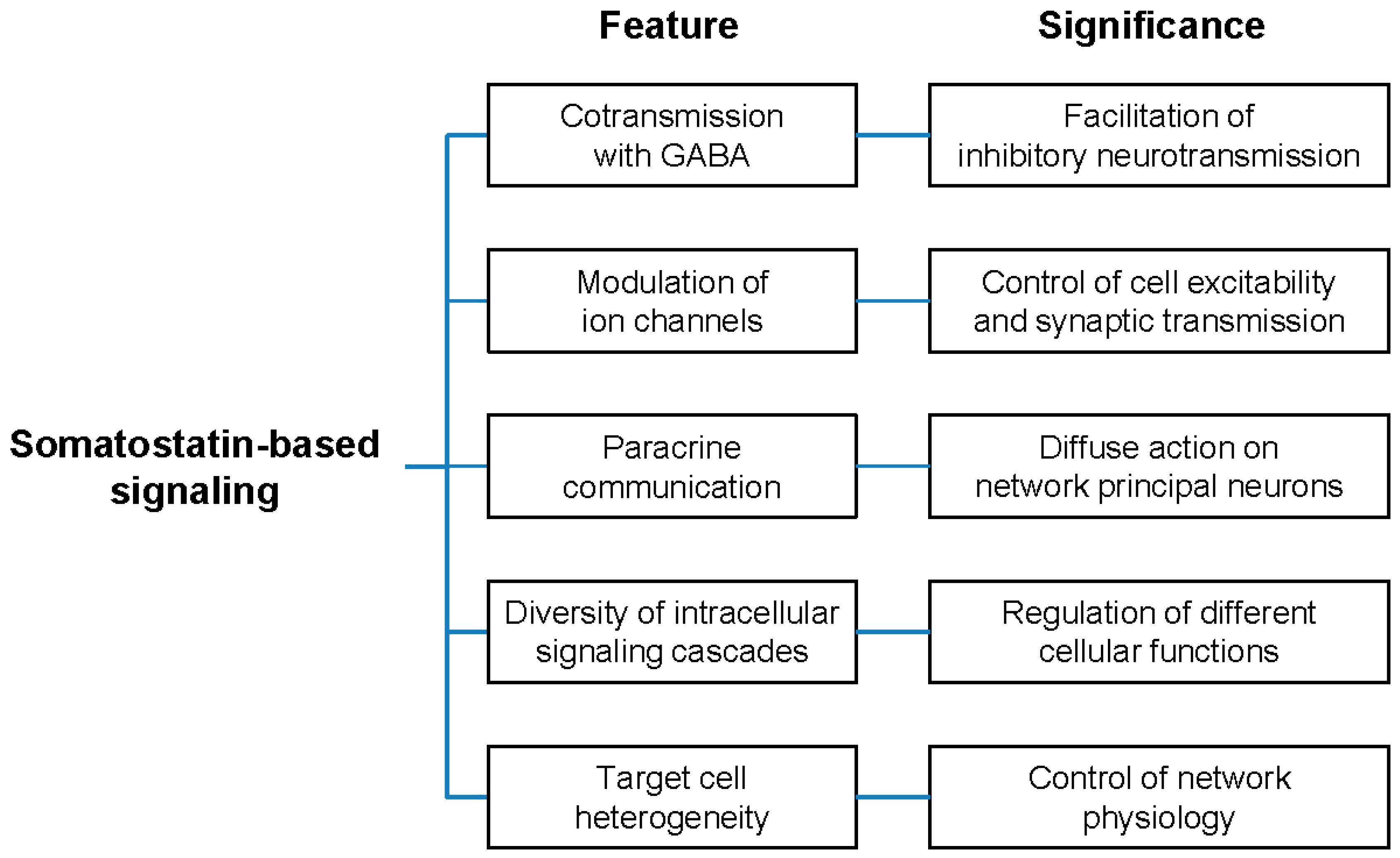 Molecular Network Identified Underlying >> Ijms Free Full Text Molecular And Cellular Mechanisms Underlying