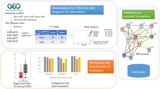 Ijms Free Full Text Chromogranin A Expression As A Novel Biomarker For Early Diagnosis Of Colon Cancer Patients