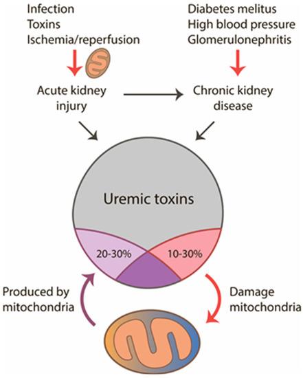 uremic toxins: classification)