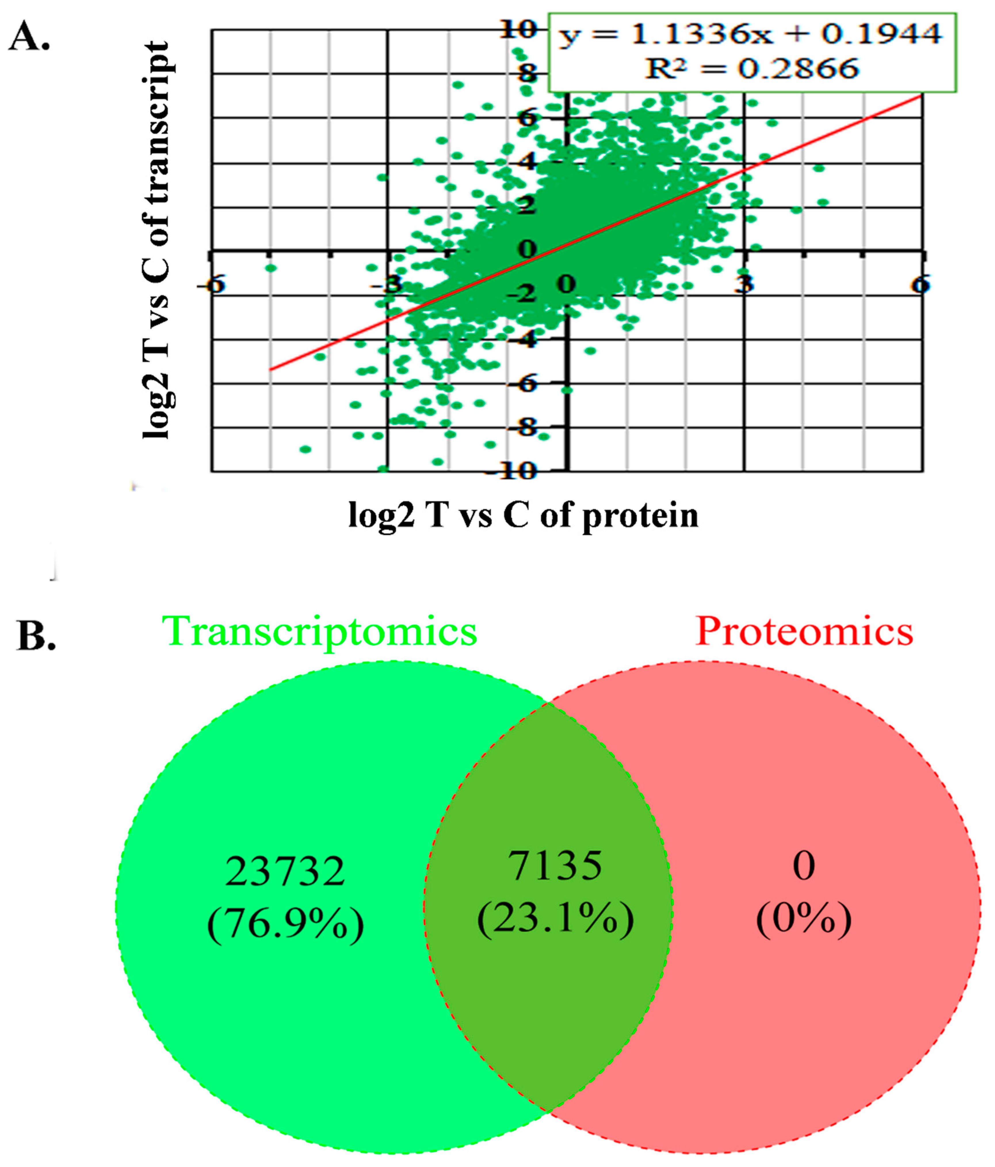 IJMS | Free Full-Text | Comparative Transcriptomic and Proteomic