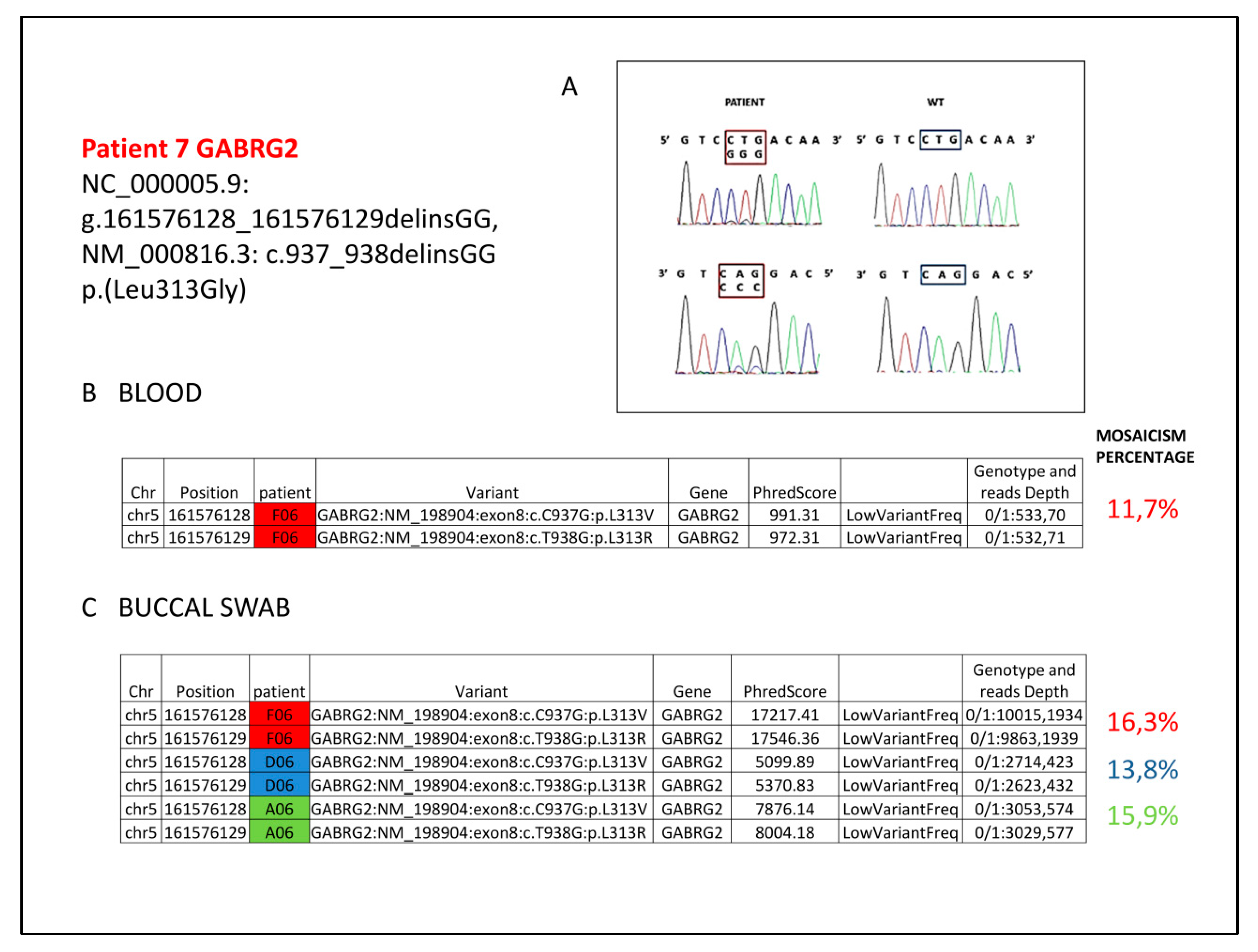 IJMS | Free Full-Text | Pathogenic Variants in STXBP1 and in