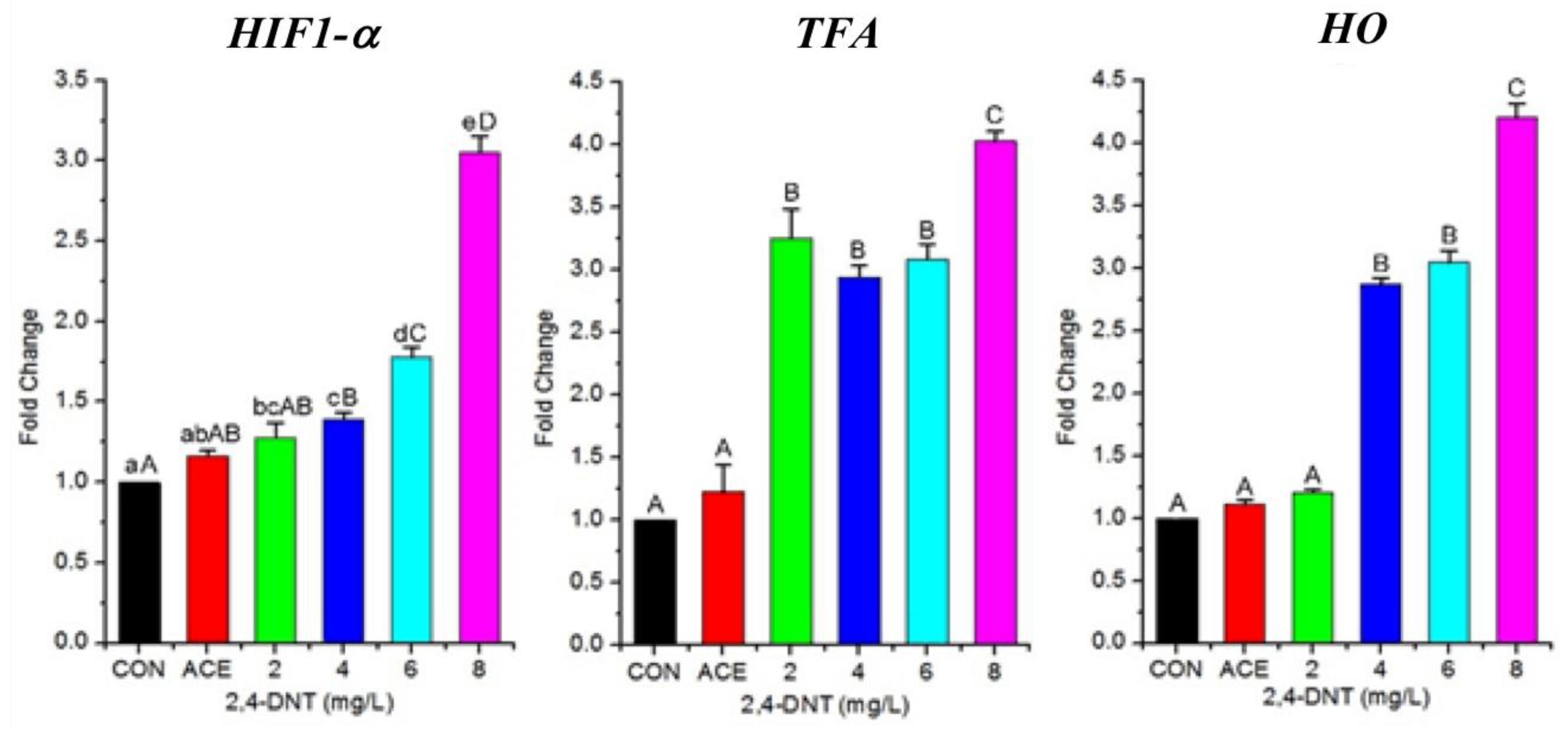 IJMS | Free Full-Text | 2,4-Dinitrotoluene (DNT) Perturbs Yolk