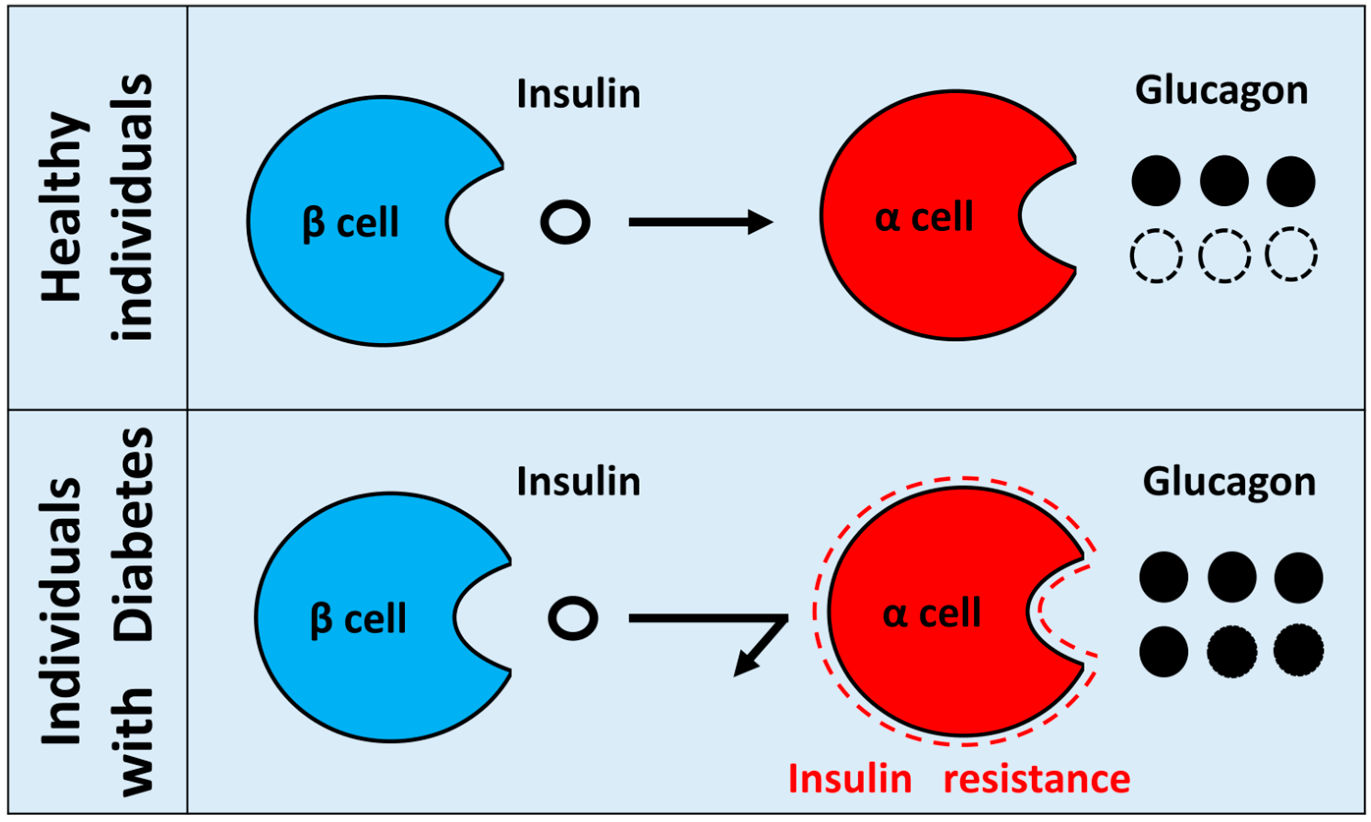 IJMS   Free Full-Text   Cell Autonomous Dysfunction and