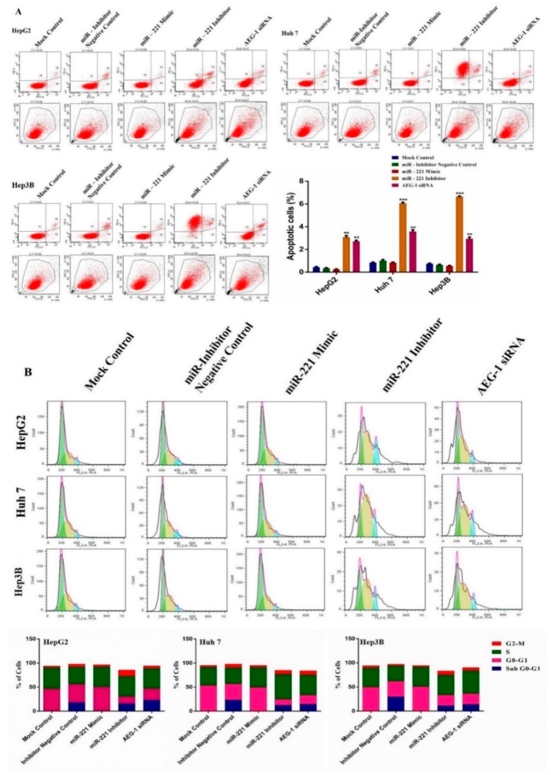 MiR-497 suppresses angiogenesis and metastasis of
