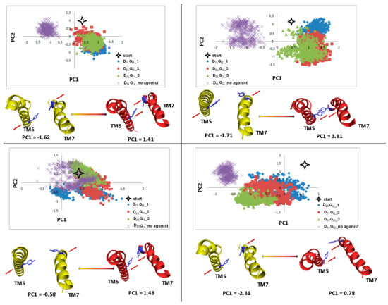 Ijms Free Full Text Preferential Coupling Of Dopamine D2s And D2l Receptor Isoforms With Gi1 And Gi2 Proteins In Silico Study Html