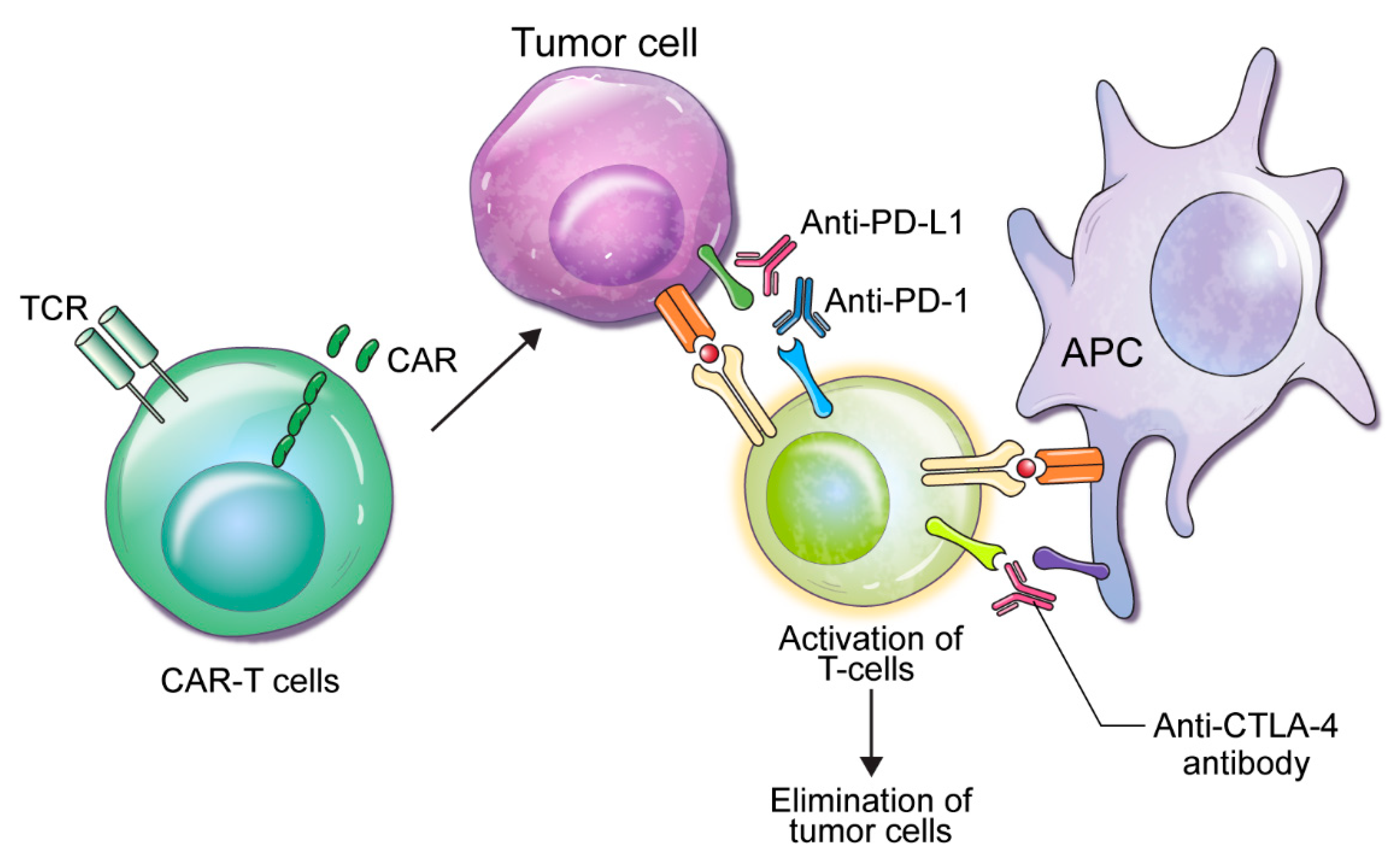 immunotherapy for prostate cancer 2020