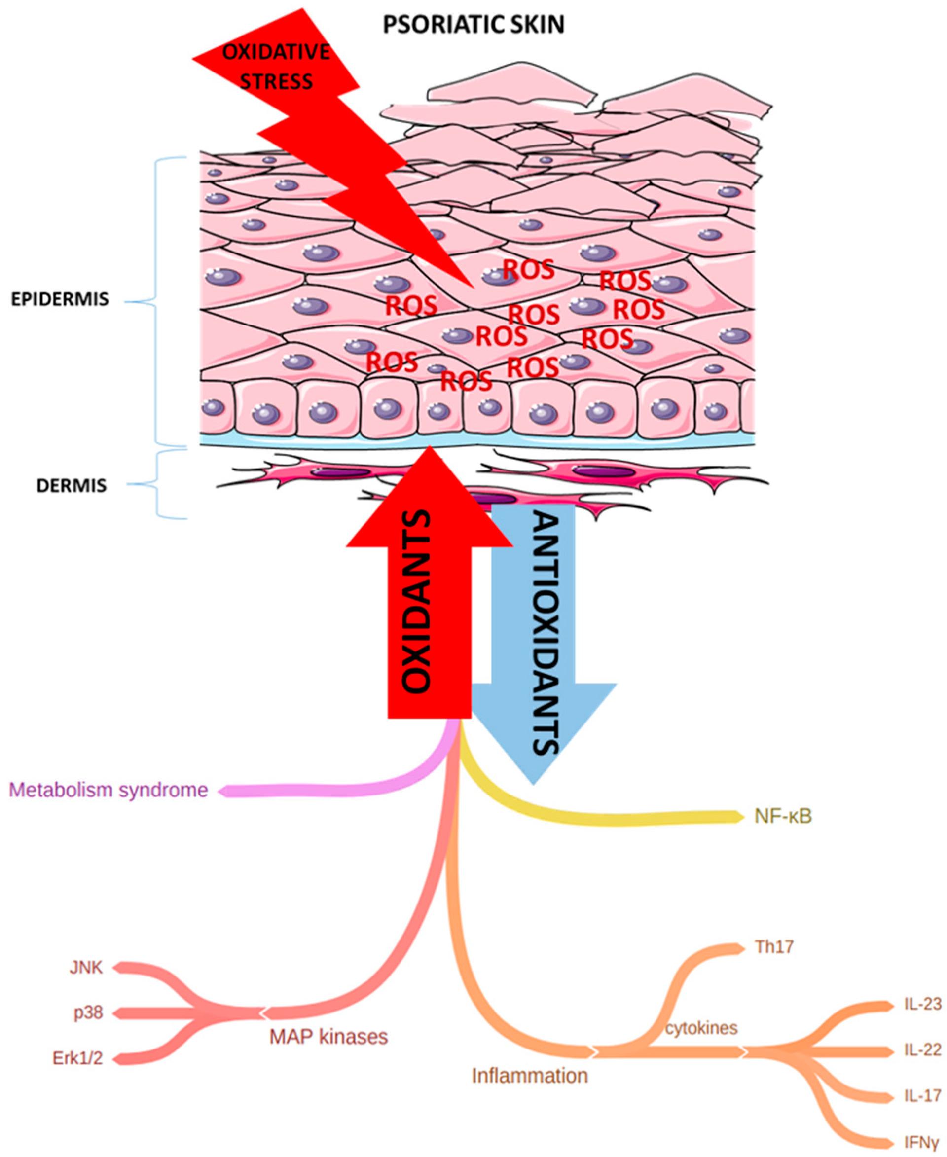 Isotonix opc 3 pikkelysömör gyógyszerek
