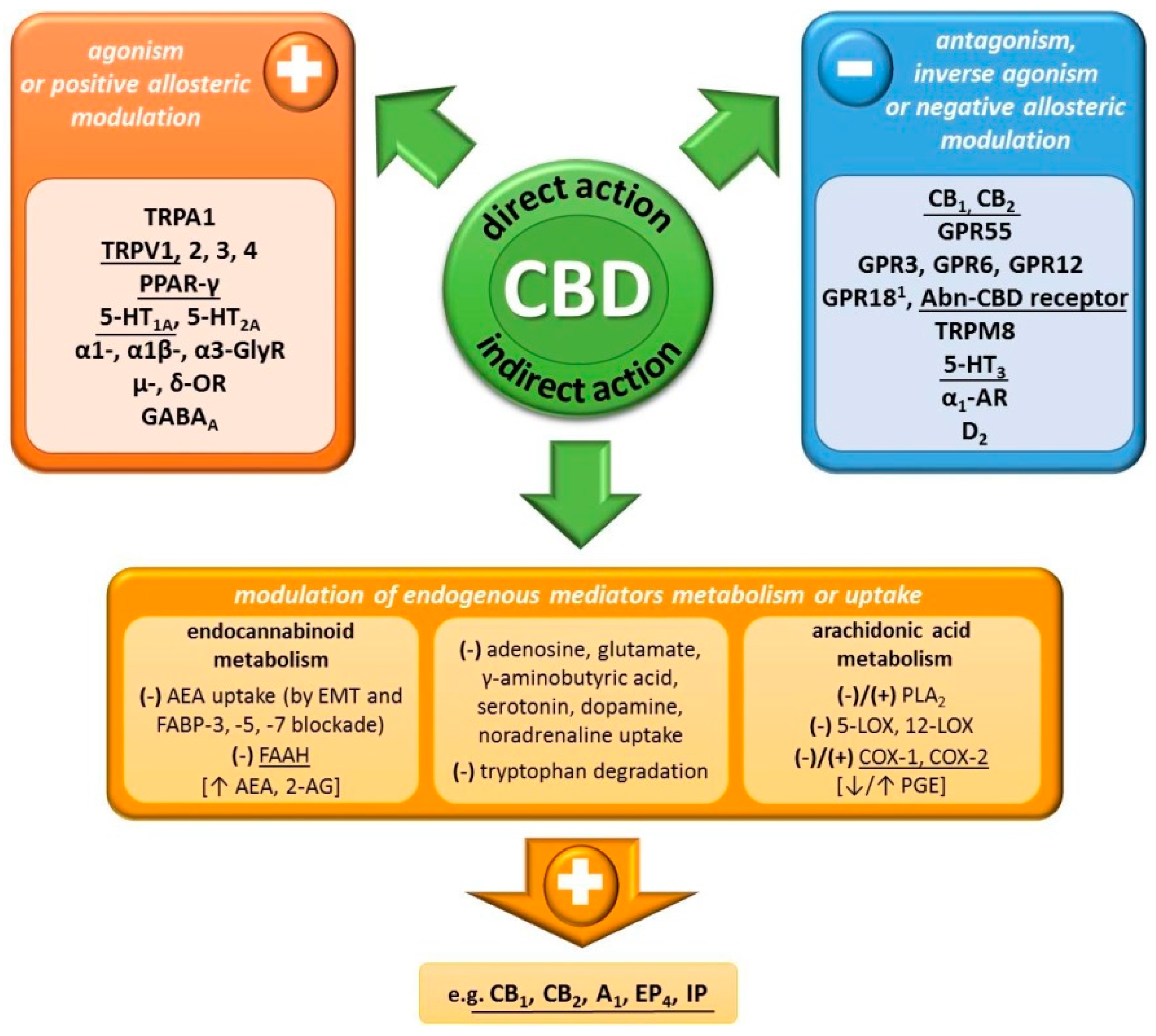 Ijms Free Full Text The Effects Of Cannabidiol A Non Intoxicating Compound Of Cannabis On The Cardiovascular System In Health And Disease Html