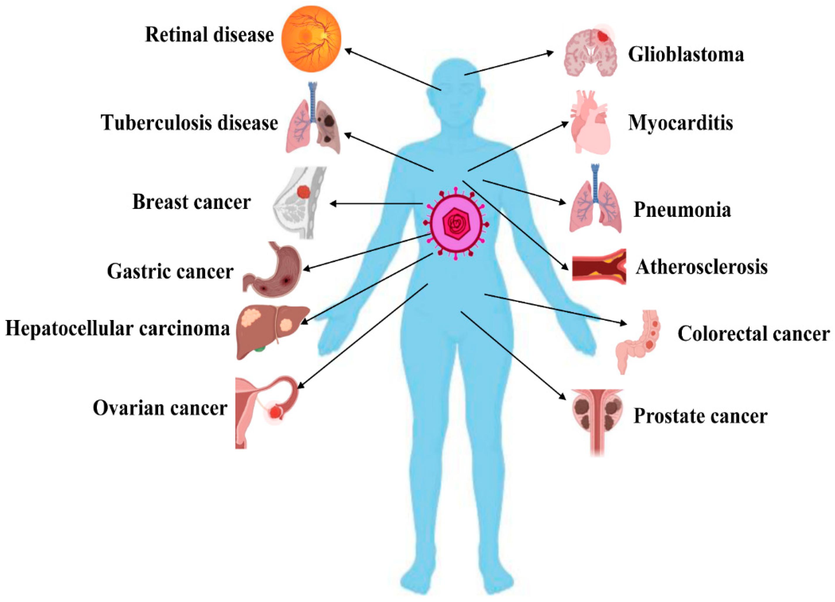 Cytomegalovírus és prostatitis Fáradt a prosztatitis
