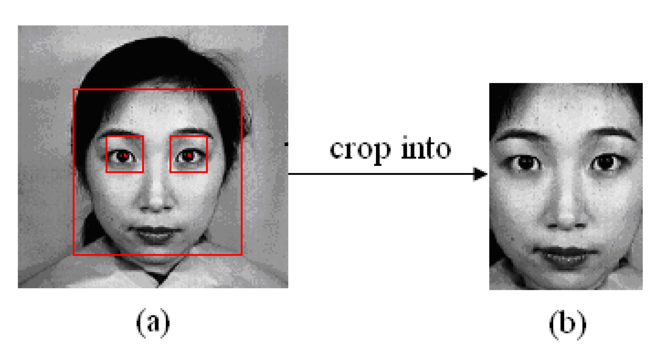 thesis on face recognition system Mance is a major concern in this thesis in approaching the recognition problem of a two-camera system consisting of a face camera for face recognition.