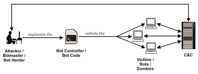 Che cos'è una botnet? Il significato e i 5 attacchi principali