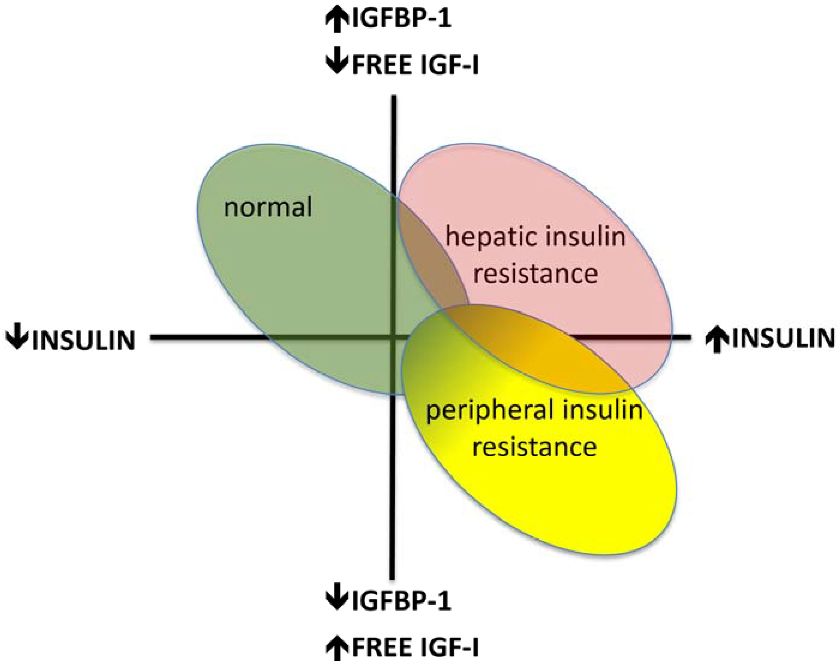 relationship between obesity and type 2 diabetes mellitus
