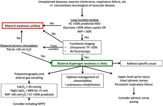 JCM | Free Full-Text | Diaphragm Dysfunction: Diagnostic Approaches ...