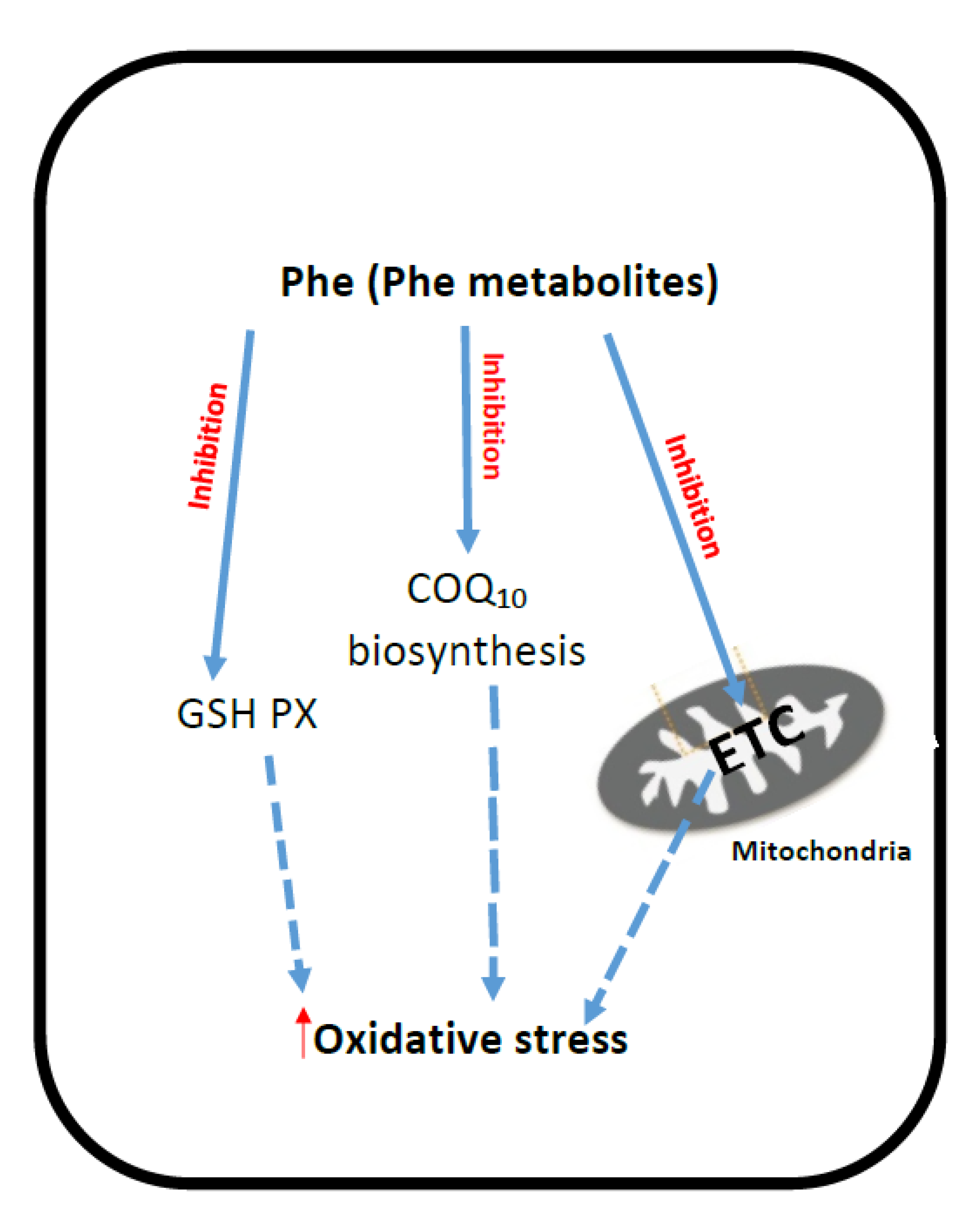 Jcm Free Full Text Evidence Of Oxidative Stress And