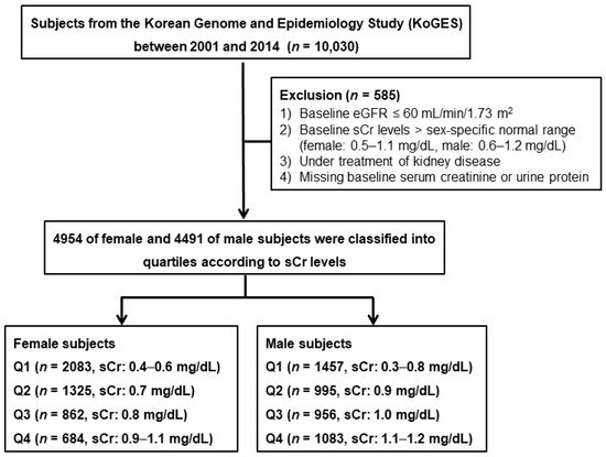 JCM | Free Full-Text | Upper Normal Serum Creatinine Concentrations
