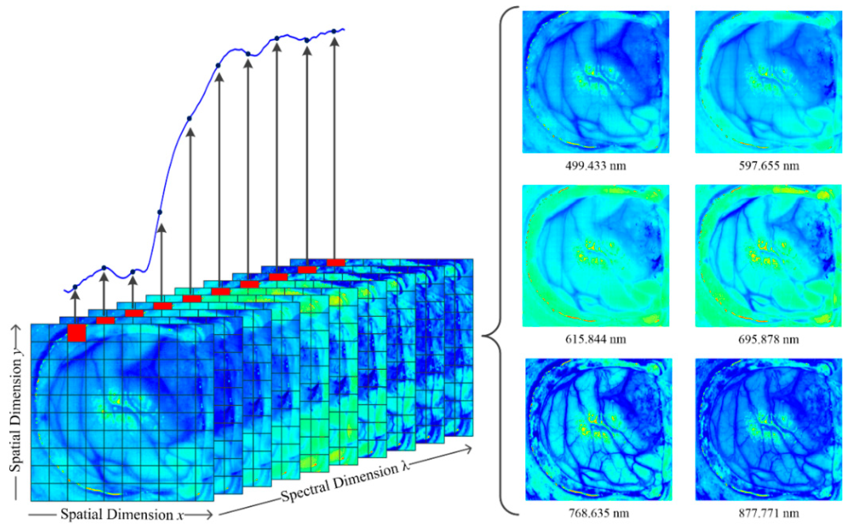 JCM | Free Full-Text | Use of Hyperspectral/Multispectral