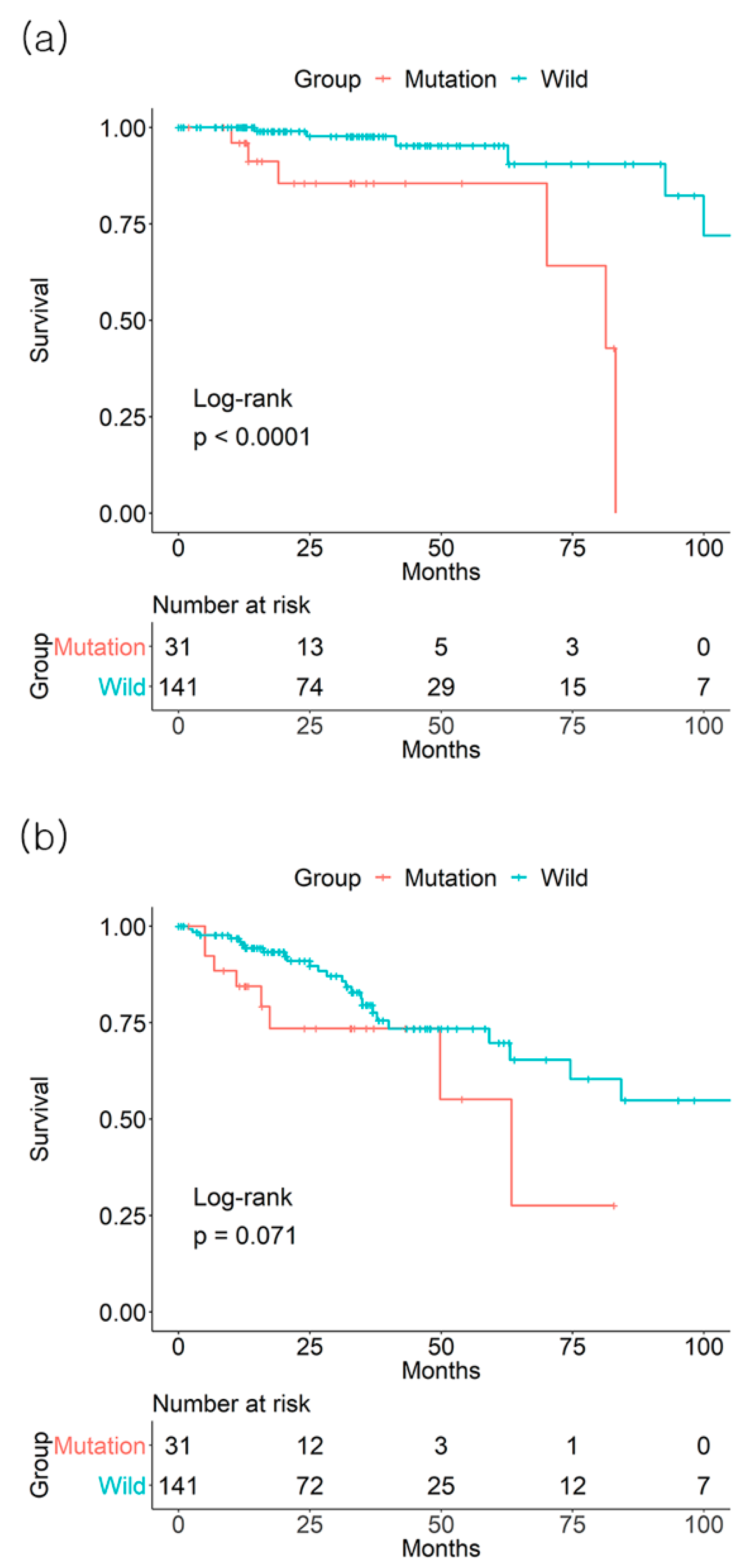 Jcm Free Full Text Colorectal Cancer Prognosis Is Not Associated With Braf And Kras Mutations A Strobe Compliant Study Html