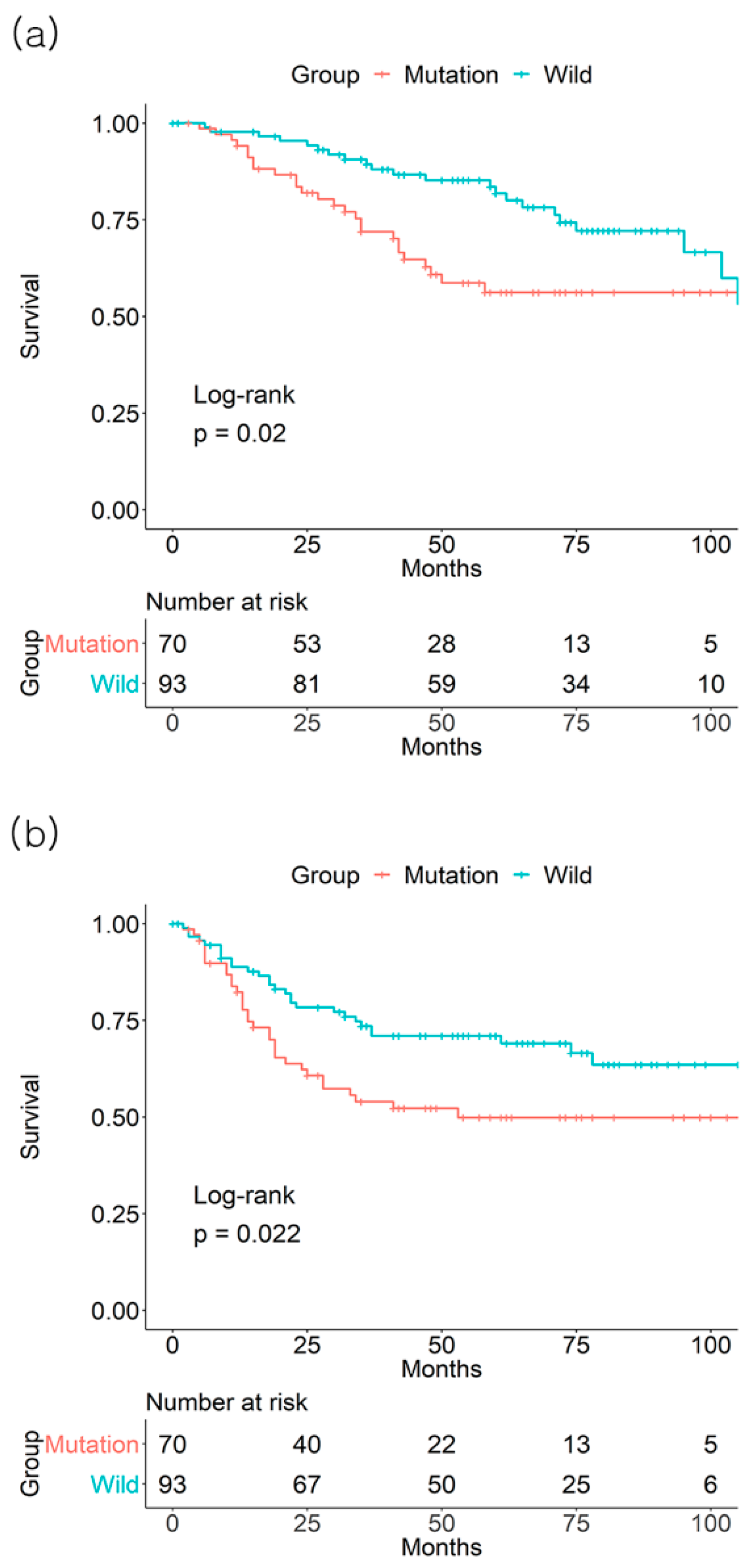 Jcm Free Full Text Colorectal Cancer Prognosis Is Not Associated With Braf And Kras Mutations A Strobe Compliant Study