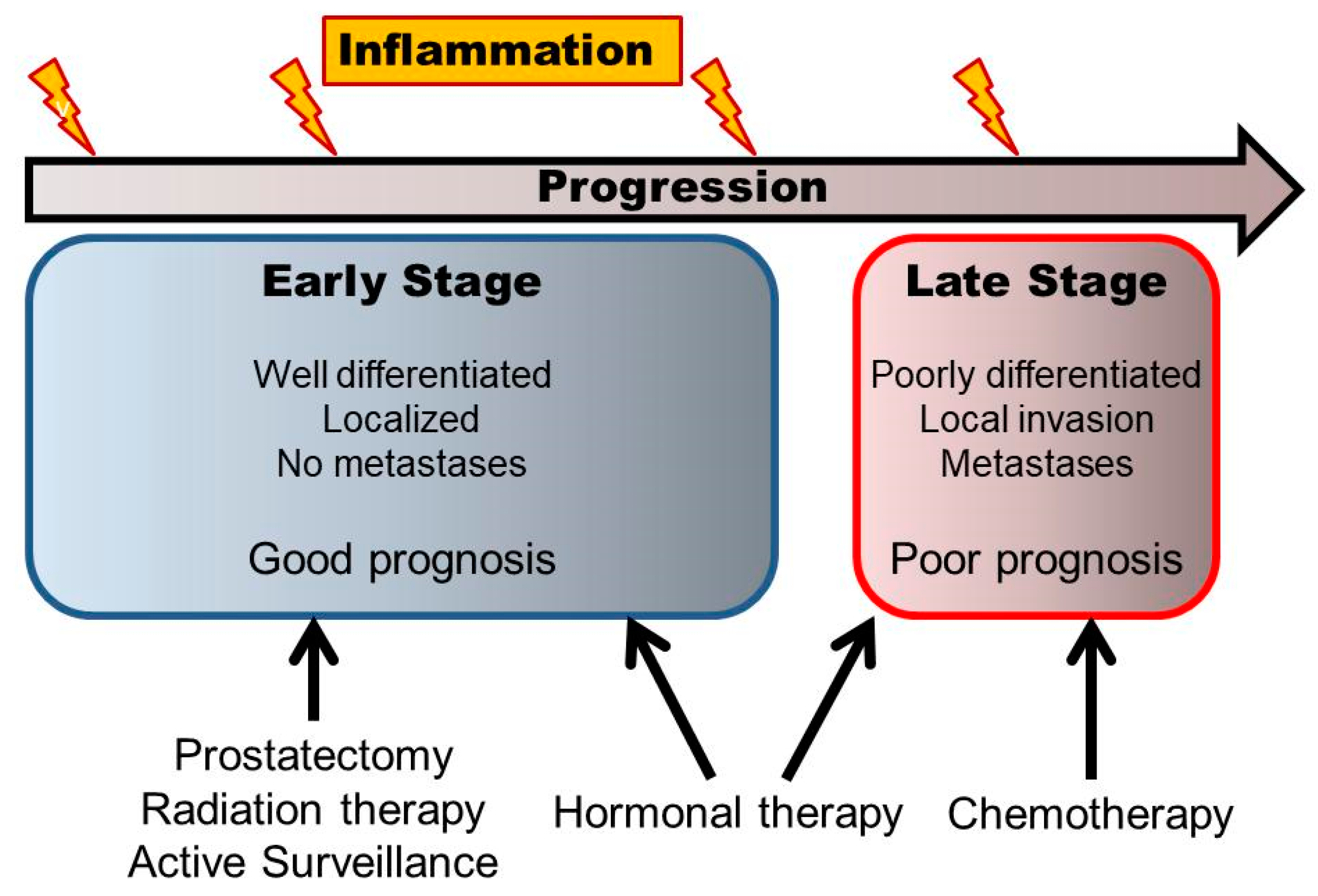 prostate cancer types and stages