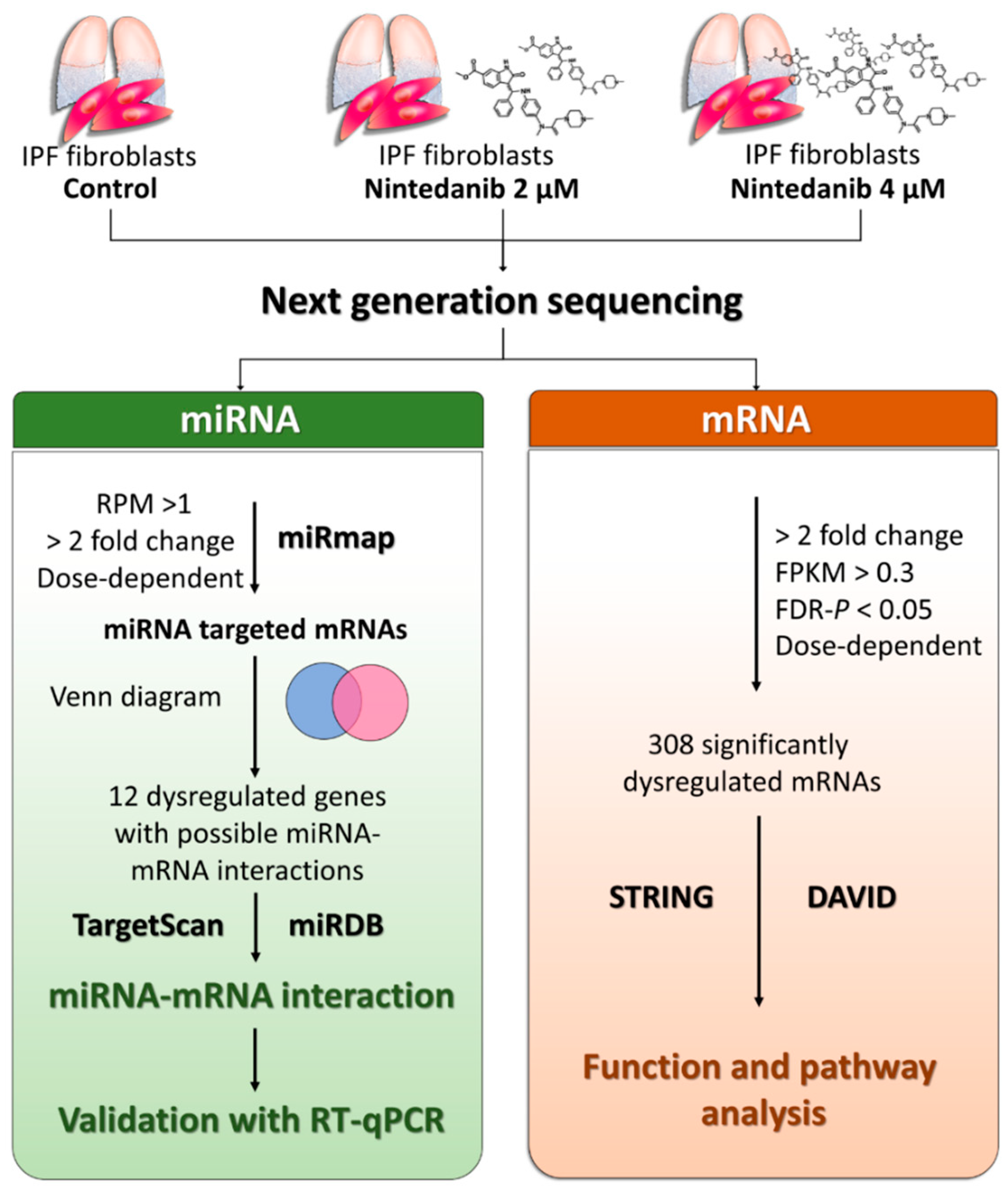 JCM | Free Full-Text | Gene Expression Changes Associated