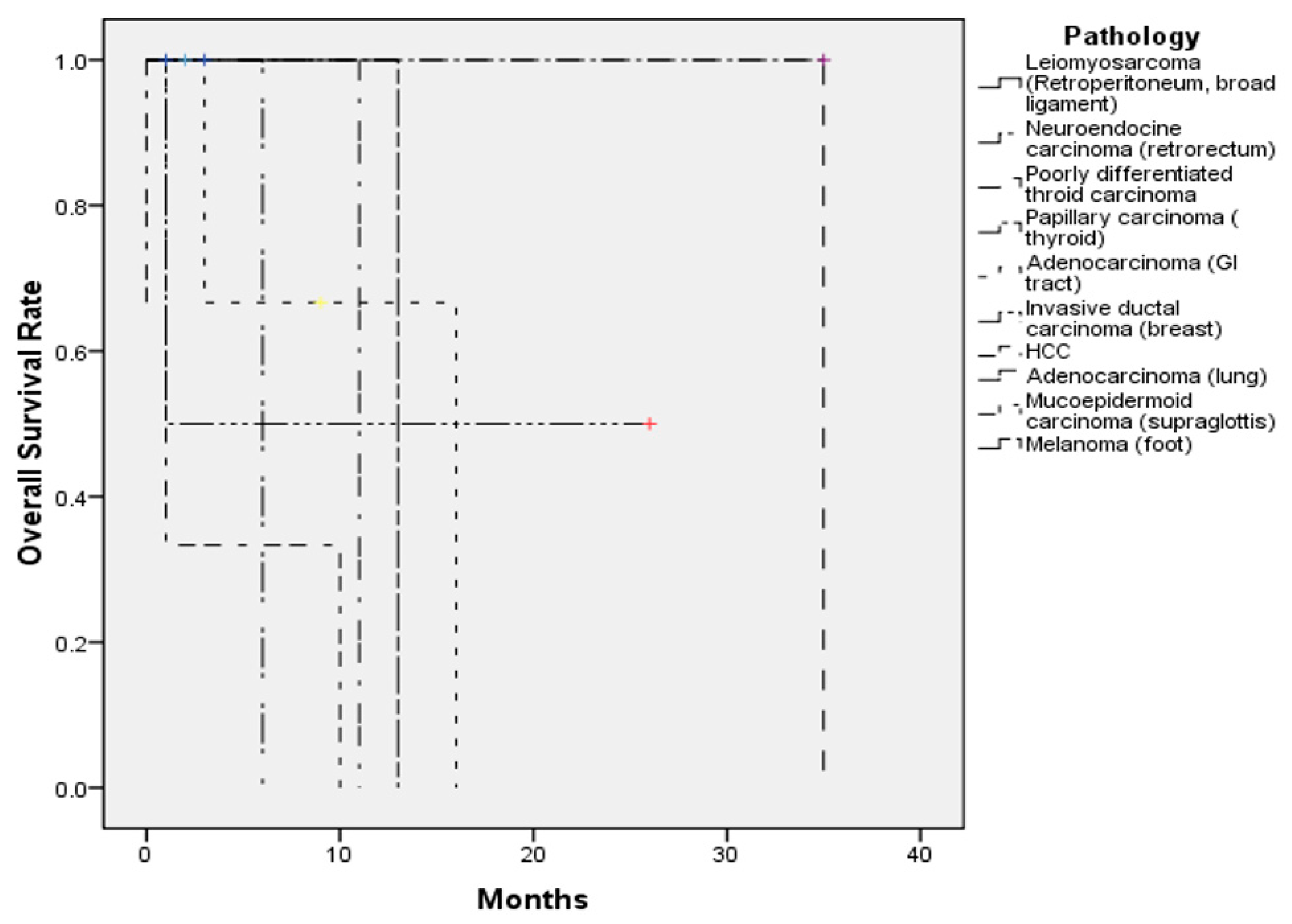 Jcm Free Full Text Metastatic Tumors Of The Sinonasal Cavity A 15 Year Review Of 17 Cases Html