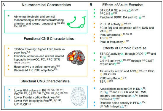 jcm free full text effects of exercise on cognitive performancefigure 1
