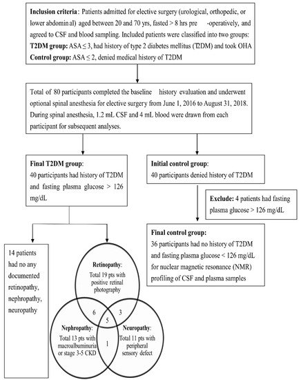 JCM | Special Issue : Type 2 Diabetes: Update on Pathophysiology and