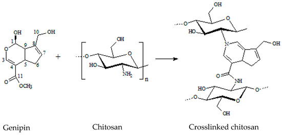 J  Compos  Sci  | Free Full-Text | Chitosan Hydrogels Crosslinked by