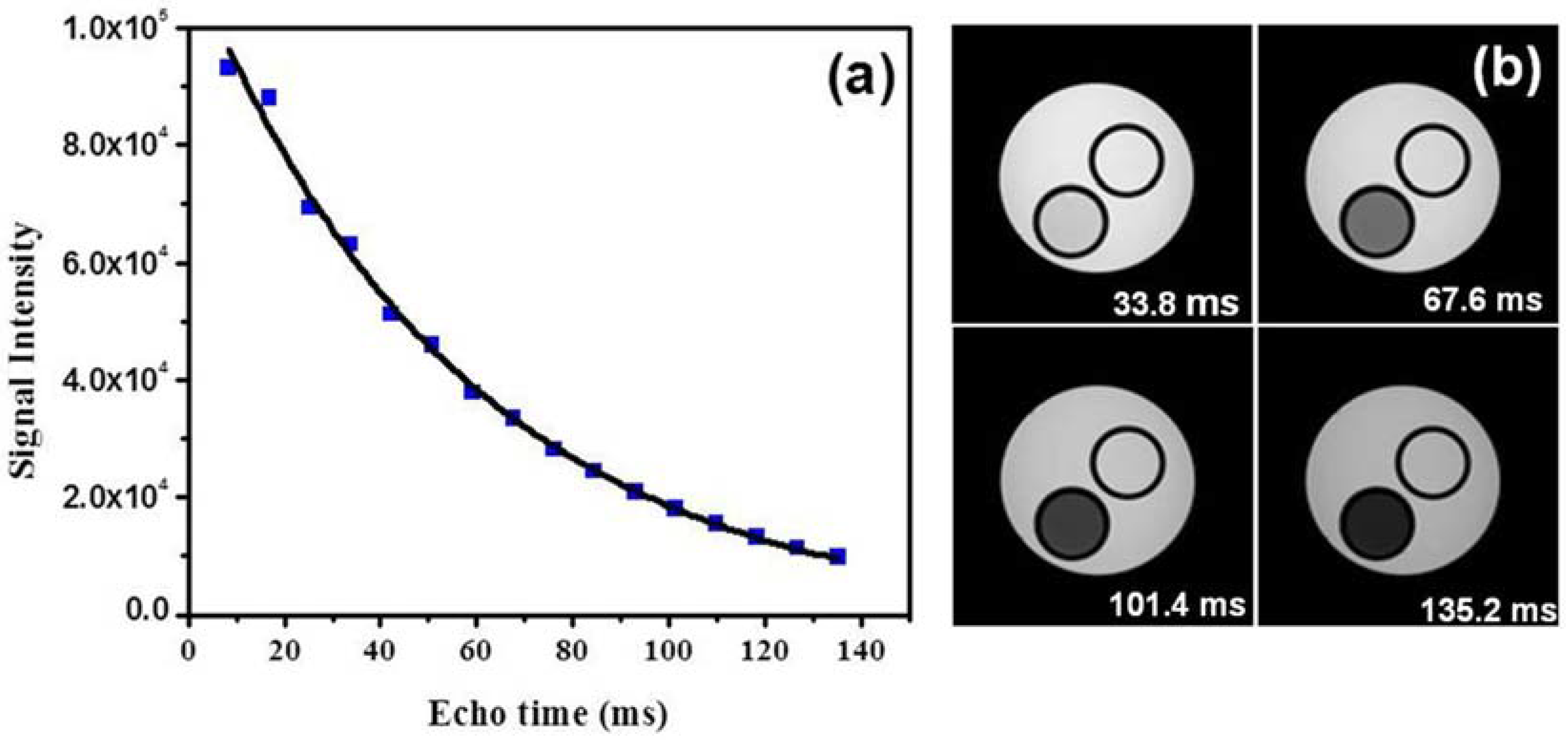Jfb free full text fe corecarbon shell nanoparticles as jfb 08 00046 g003 biocorpaavc Images