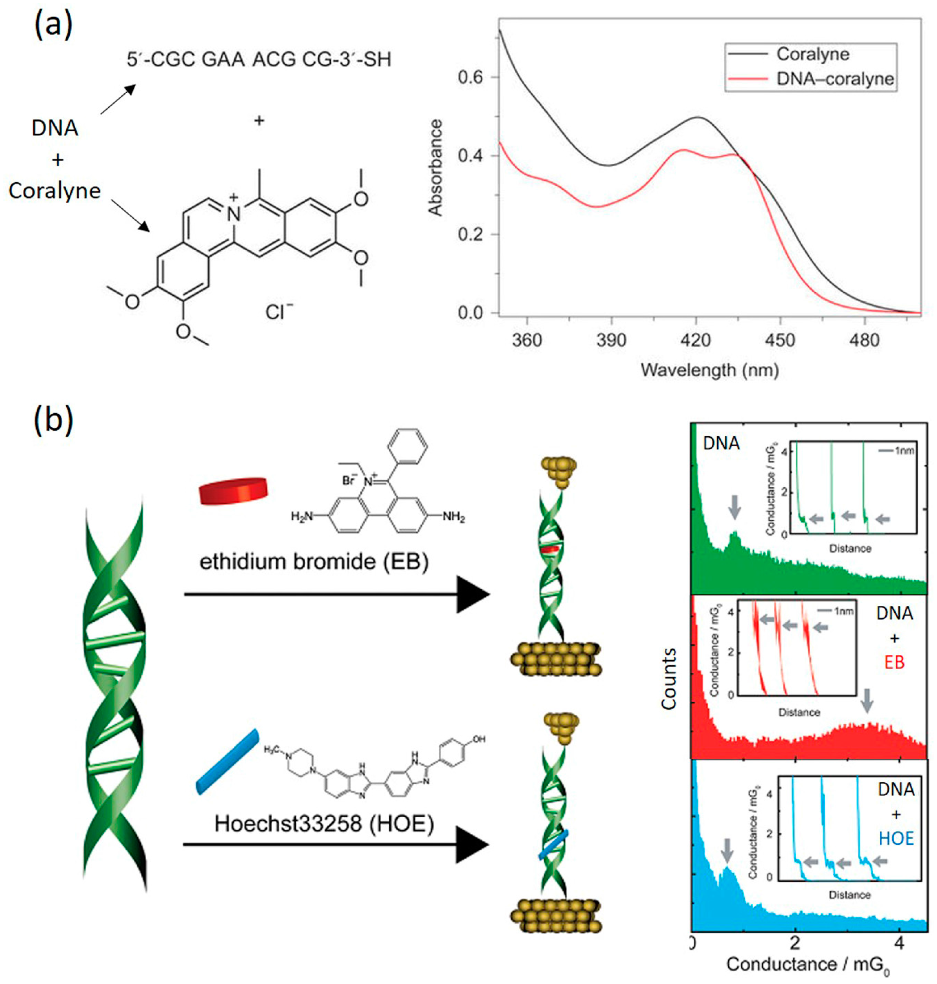dna engineering properties and applications