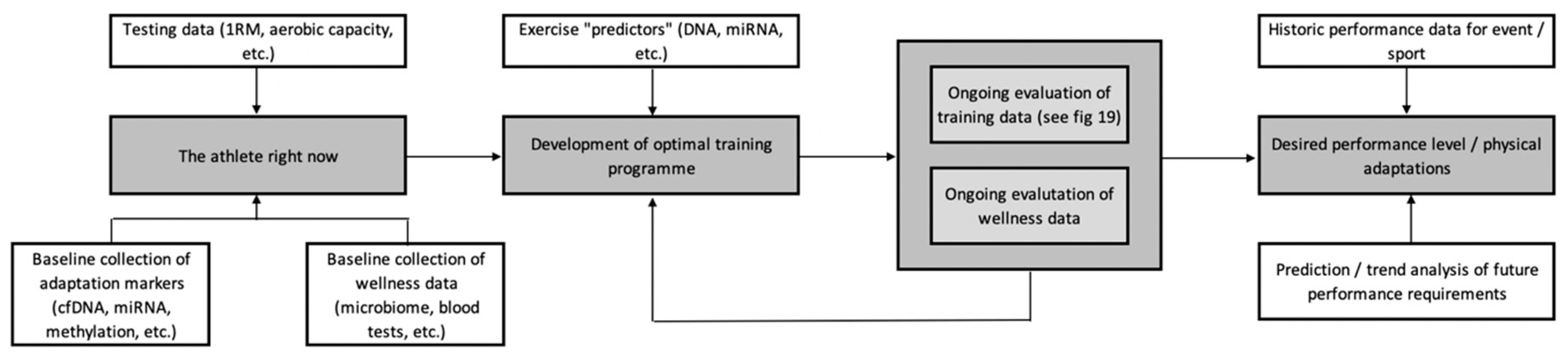 JFMK | Free Full-Text | The Development of a Personalised Training