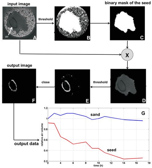 J  Imaging | Free Full-Text | Evaluation of 3D/2D Imaging