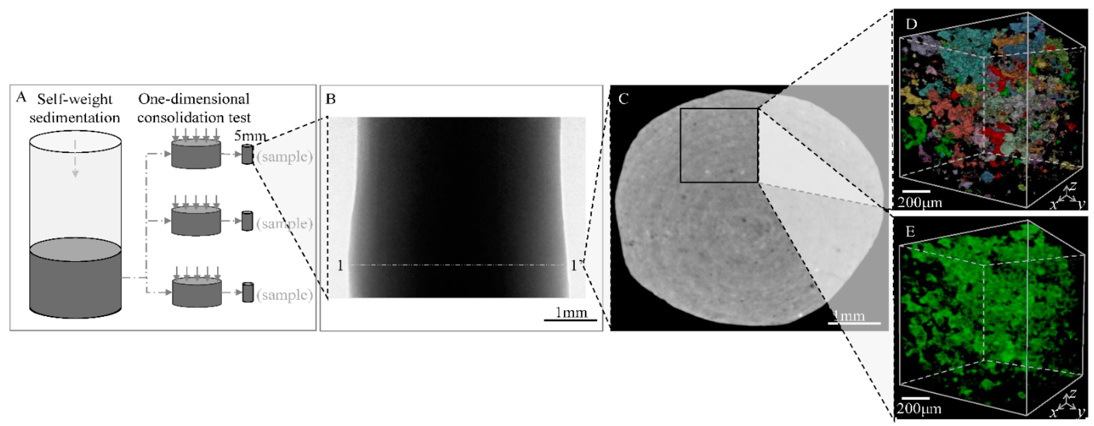 Bonito plantilla elsevier embellecimiento ejemplo de for Sciencedirect latex template